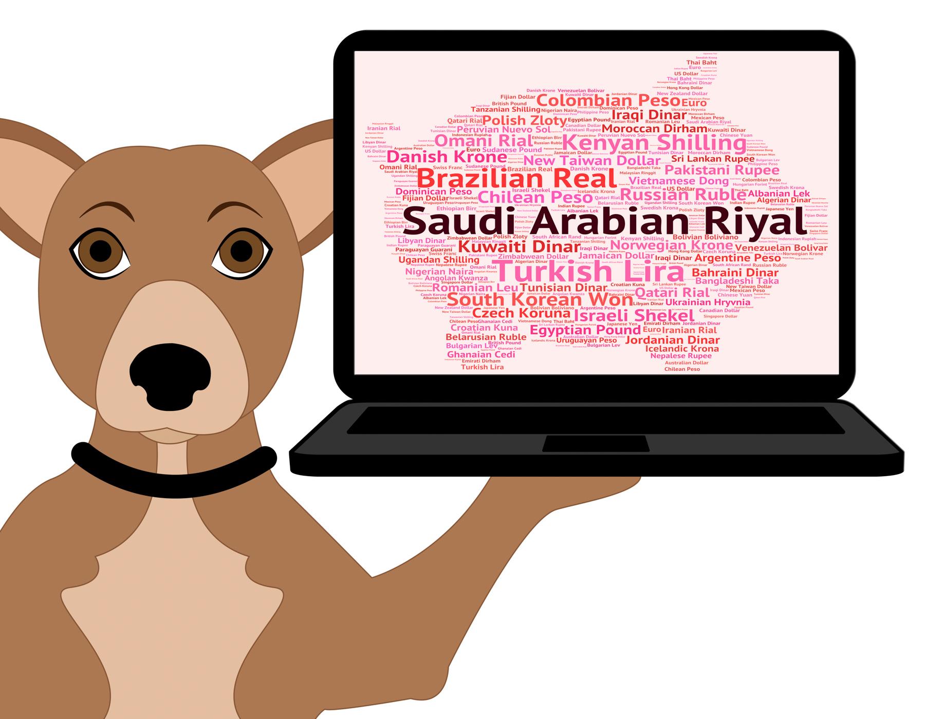 Saudi arabian riyal shows foreign currency and coin photo