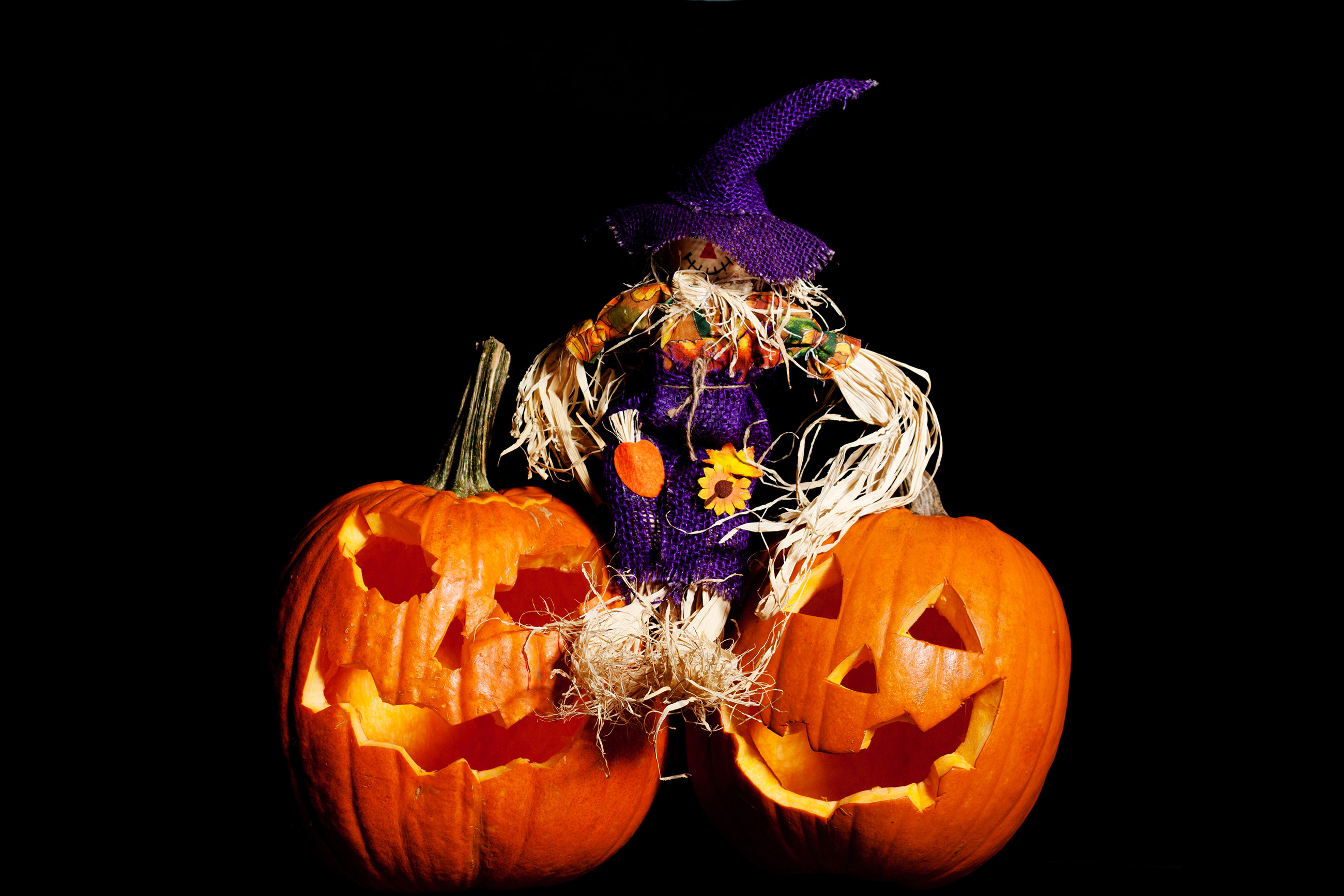 Scarecrow sitting on Pumpkins, Yellow, Lantern, Vegetable, Traditional, HQ Photo