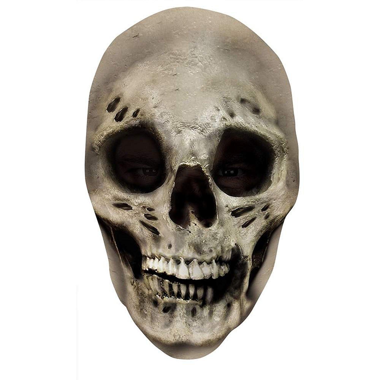 Scary skull photo