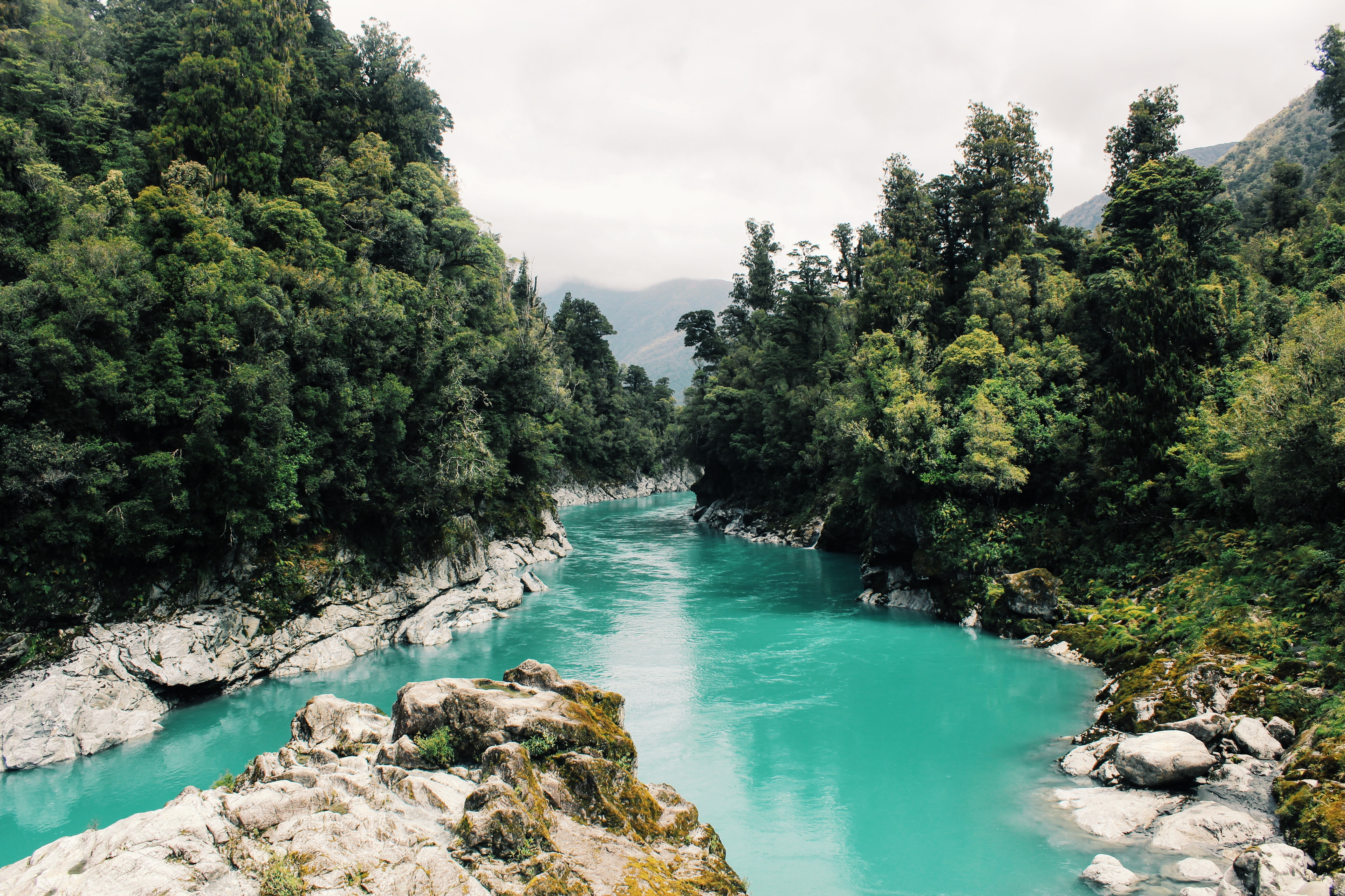 Scenic View of River, Adventure, Rainforest, Water, Turquoise, HQ Photo