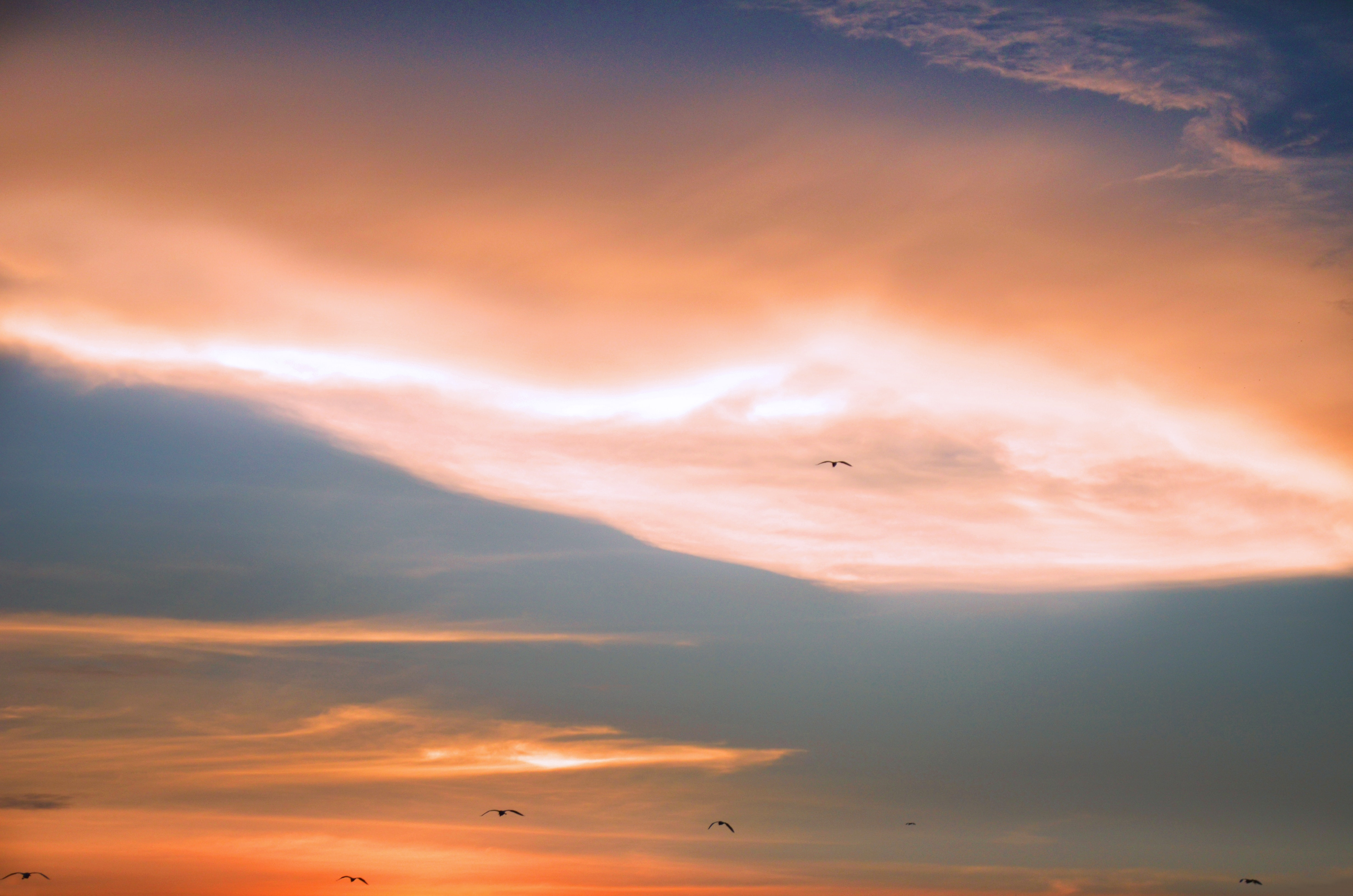 Scenic View of Sky During Dawn, Nature, Sunset, Sunrise, Sky, HQ Photo