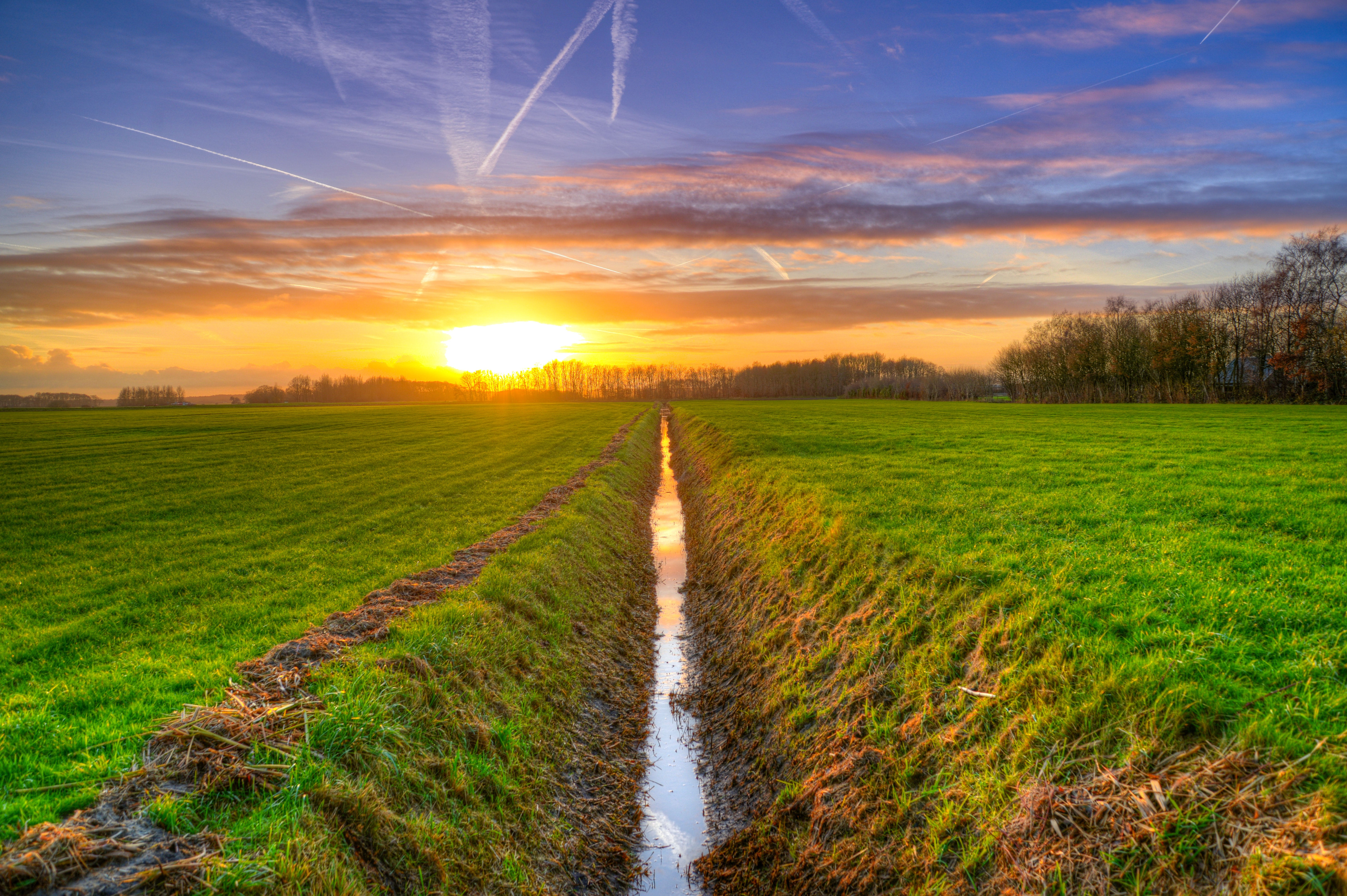 Scenic View of the Field, Agriculture, Scenic, Water, Trees, HQ Photo
