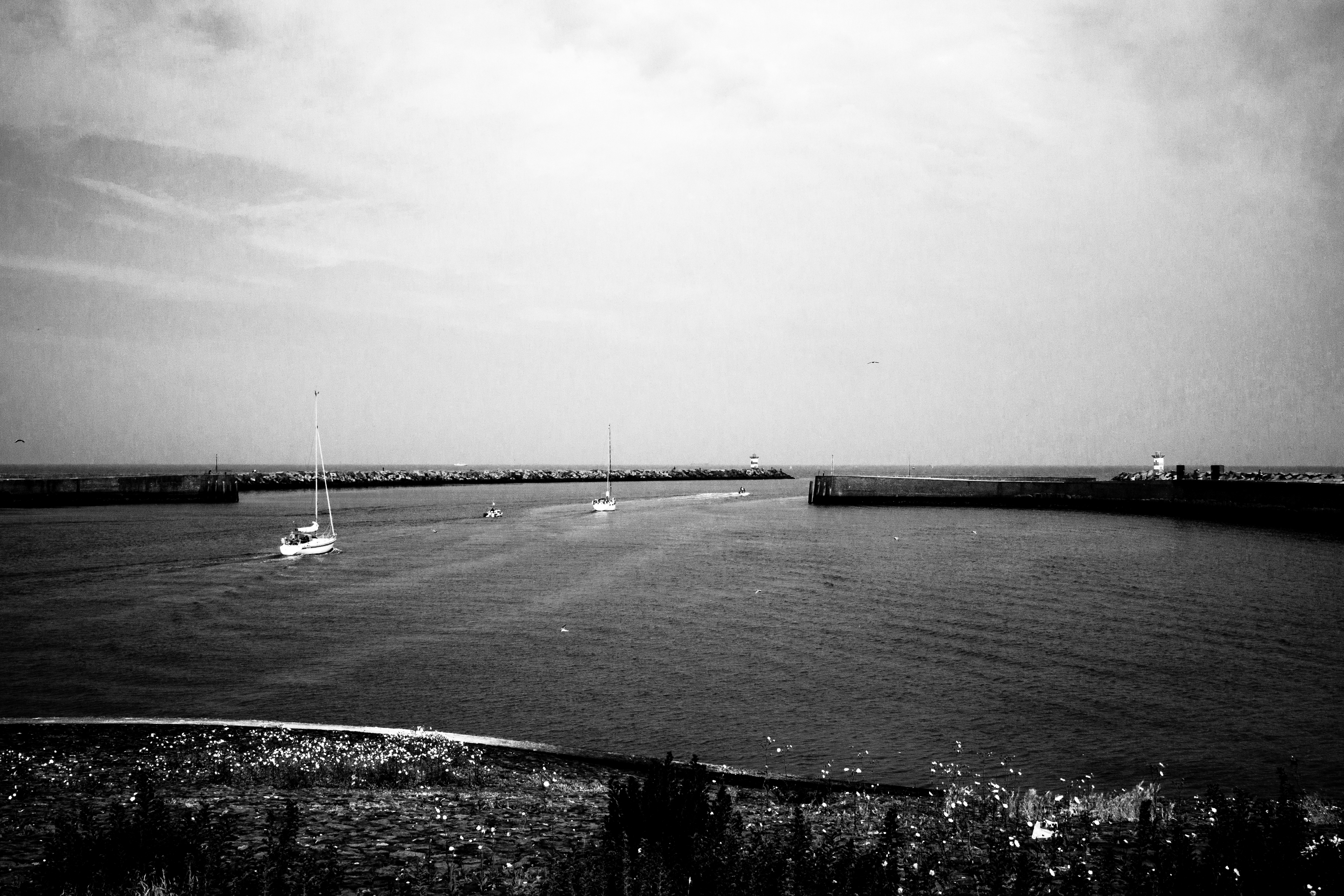 Scheveningen - port de la haye - taking the sea photo