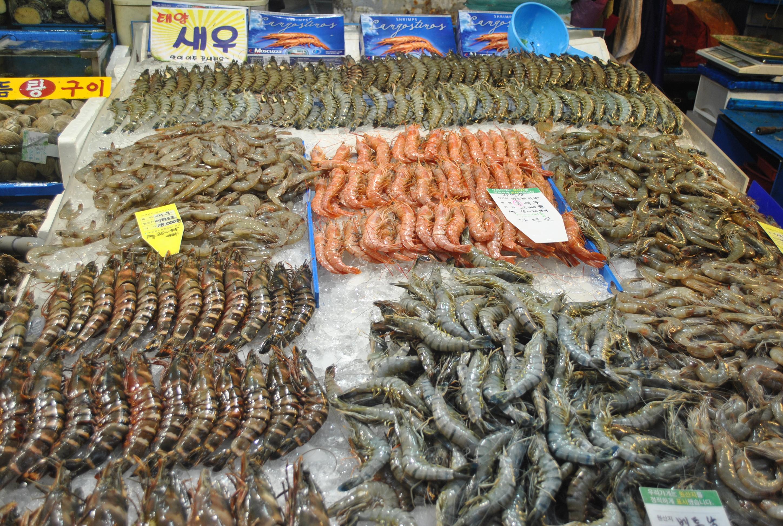 Sea food market photo