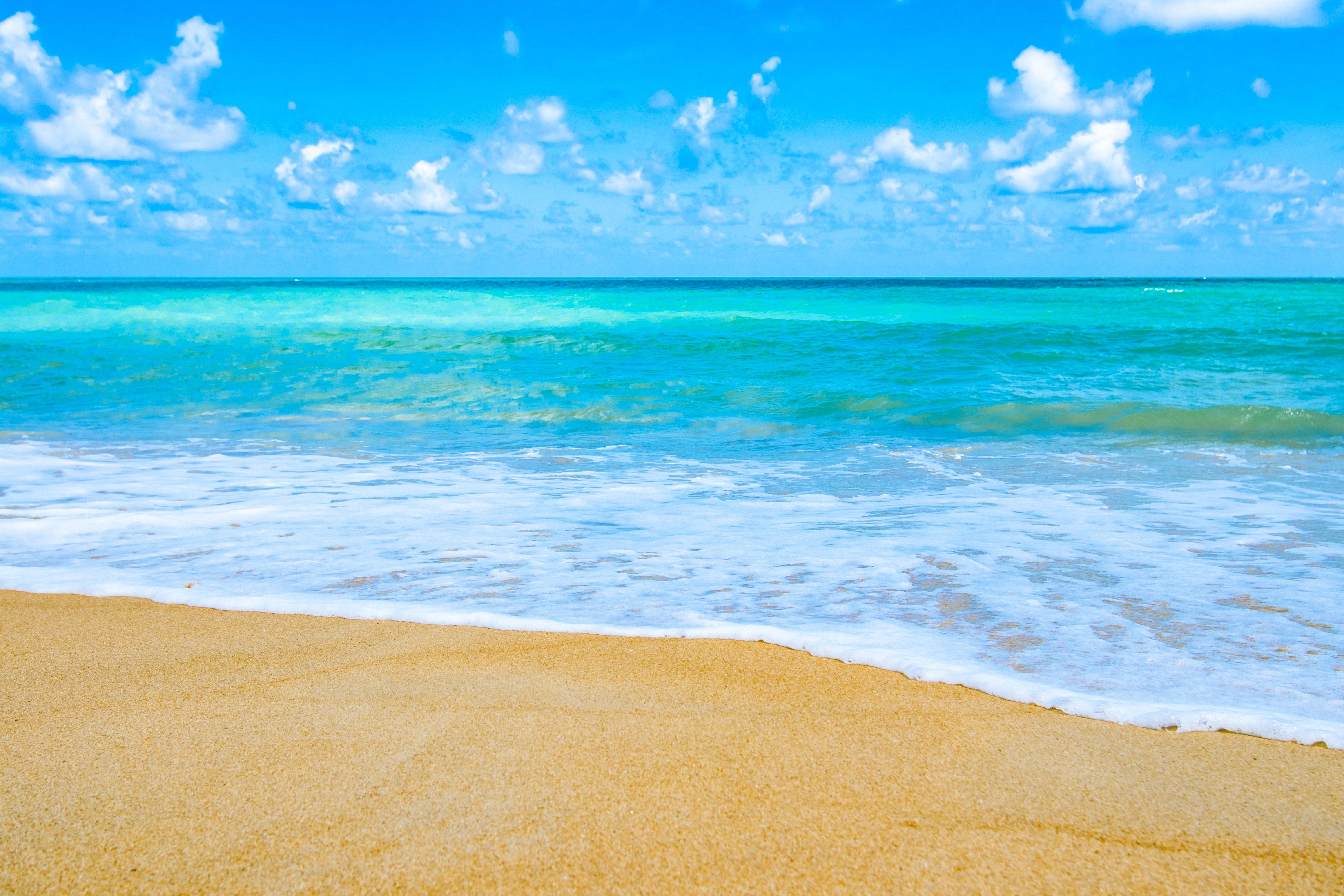 Free photo: Sea Shore - Blue, Flow, Landscape - Free ...