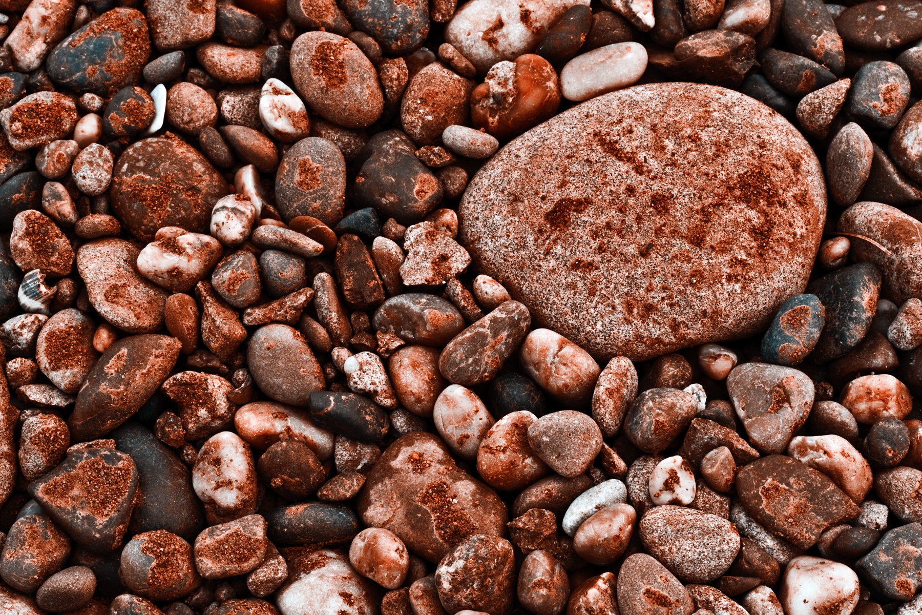 Seabed Rocks Texture, Backdrop, Shapes, Resource, Rock, HQ Photo