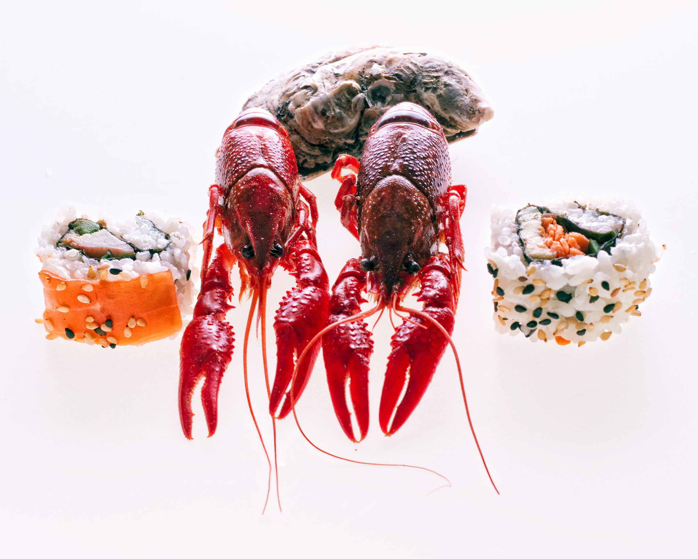 seafood, Asian, Oriental, Out, Oysters, HQ Photo