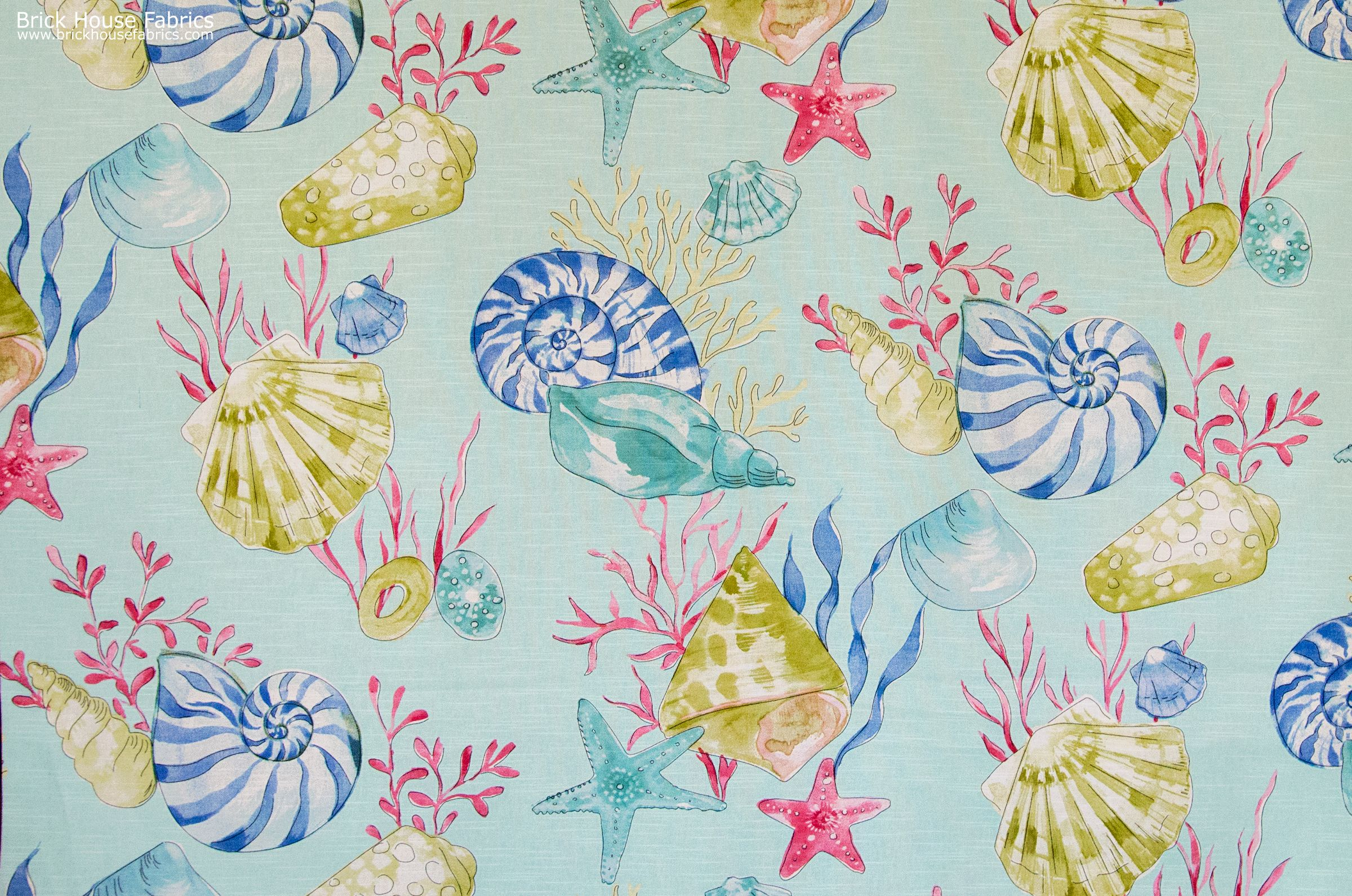 A seashell nautilus fabric with coral and starfish on a smooth wash ...