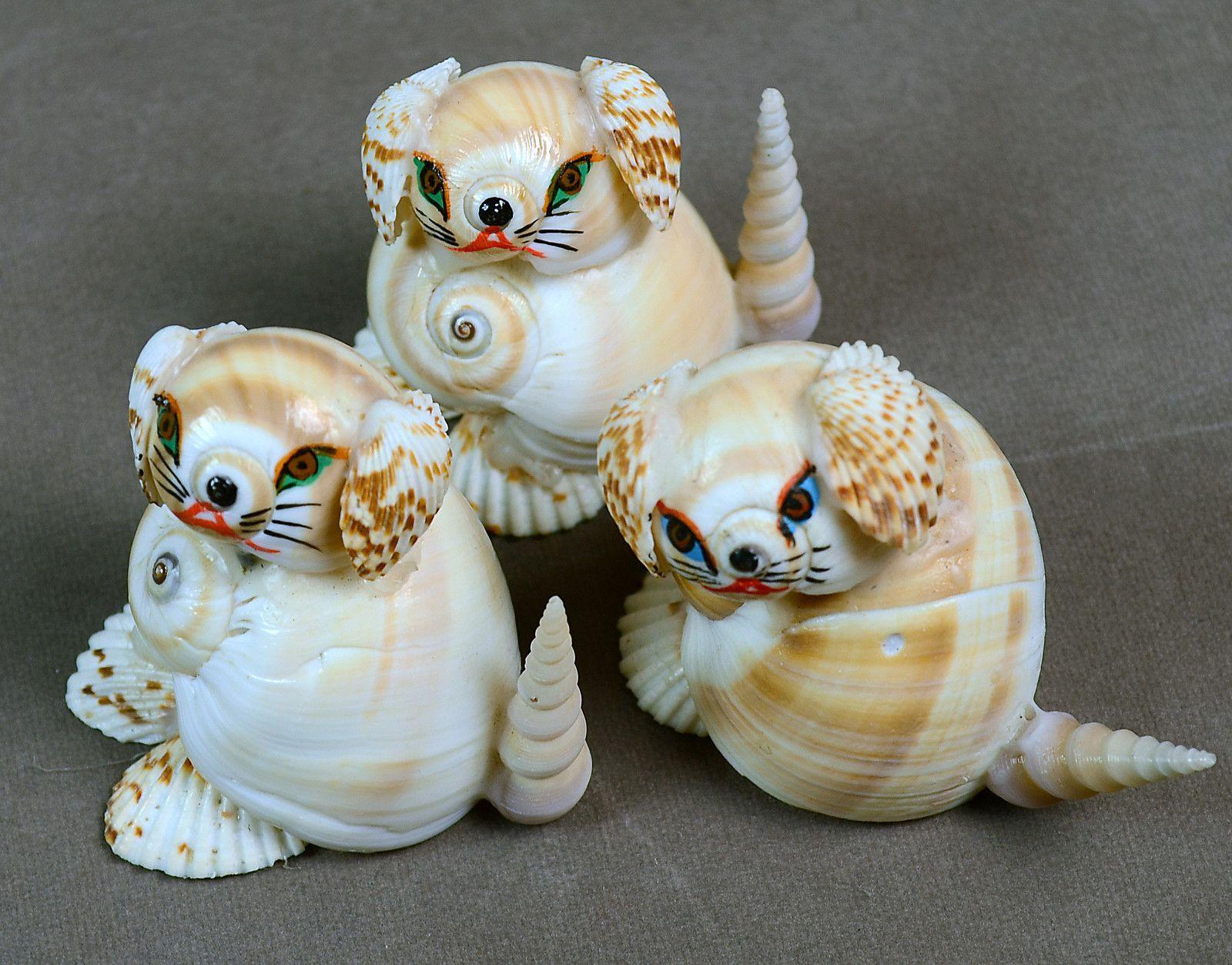 Seashell ship figure photo