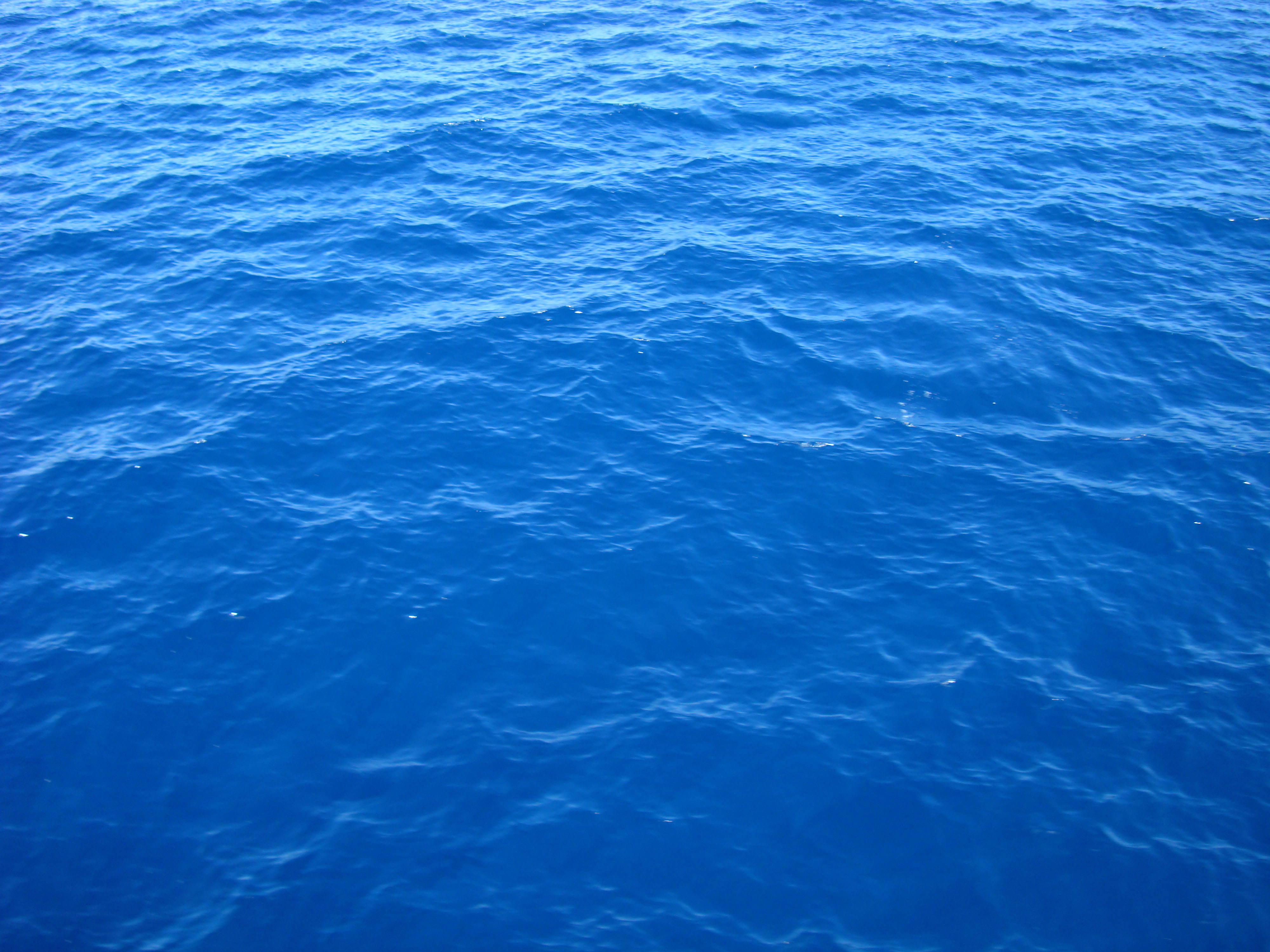 Explore Seawater - Today's Homepage