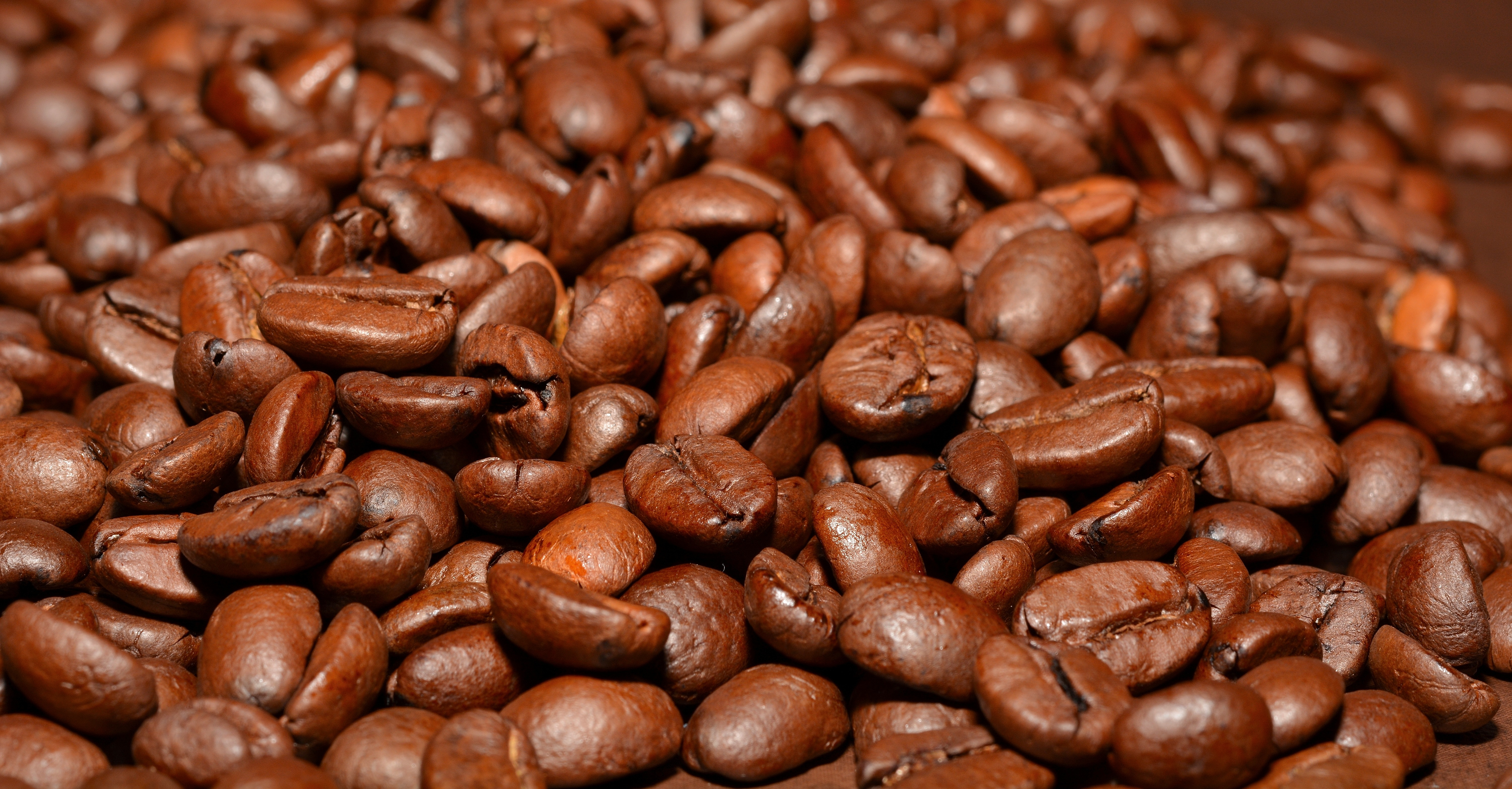 Seeds, Beans, Brown, Coffee, Coffee images, HQ Photo