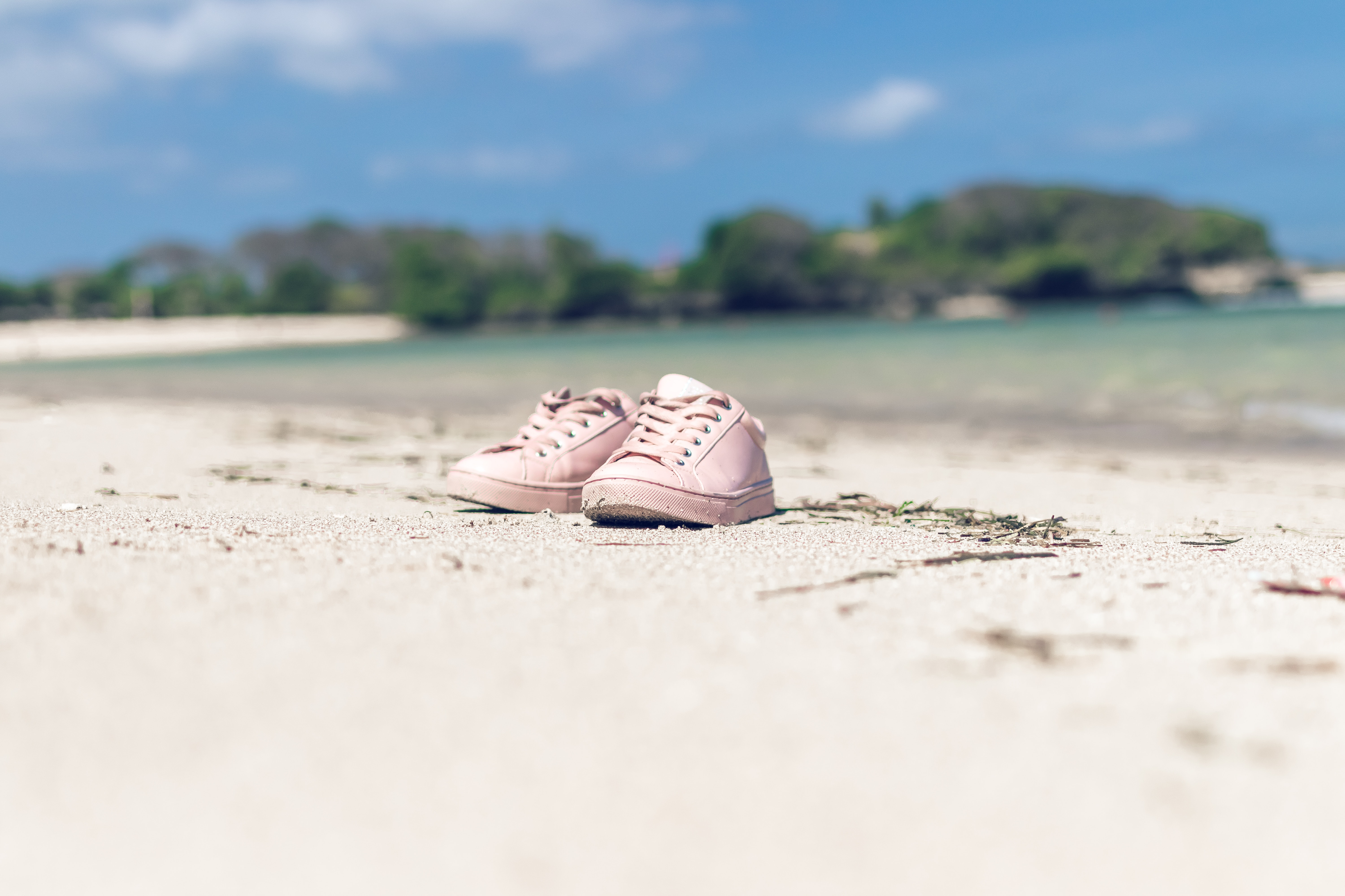 Selective Focus of Pink Low-top Sneakers, Background, Pair, Water, Sunny, HQ Photo