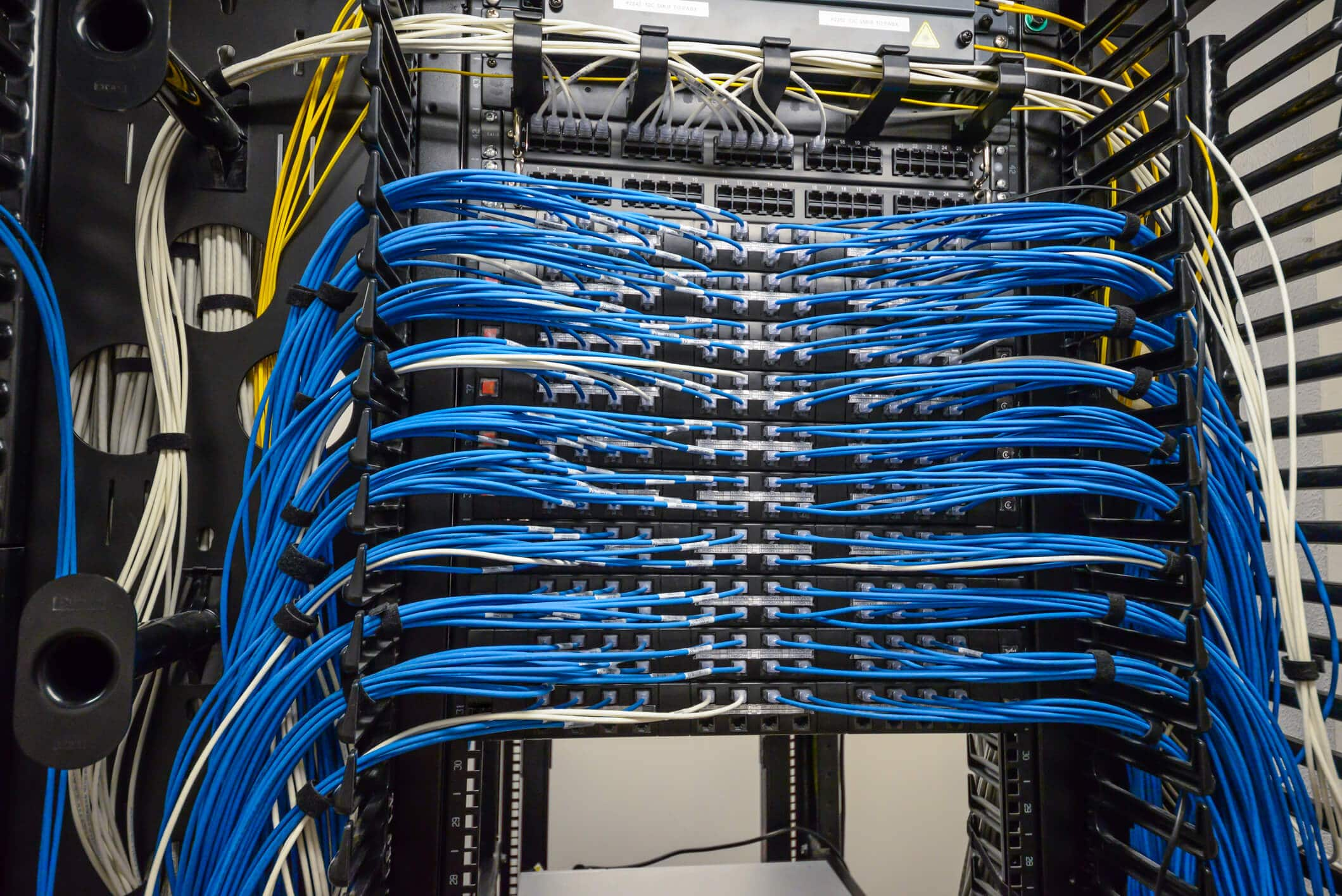Server network cables photo