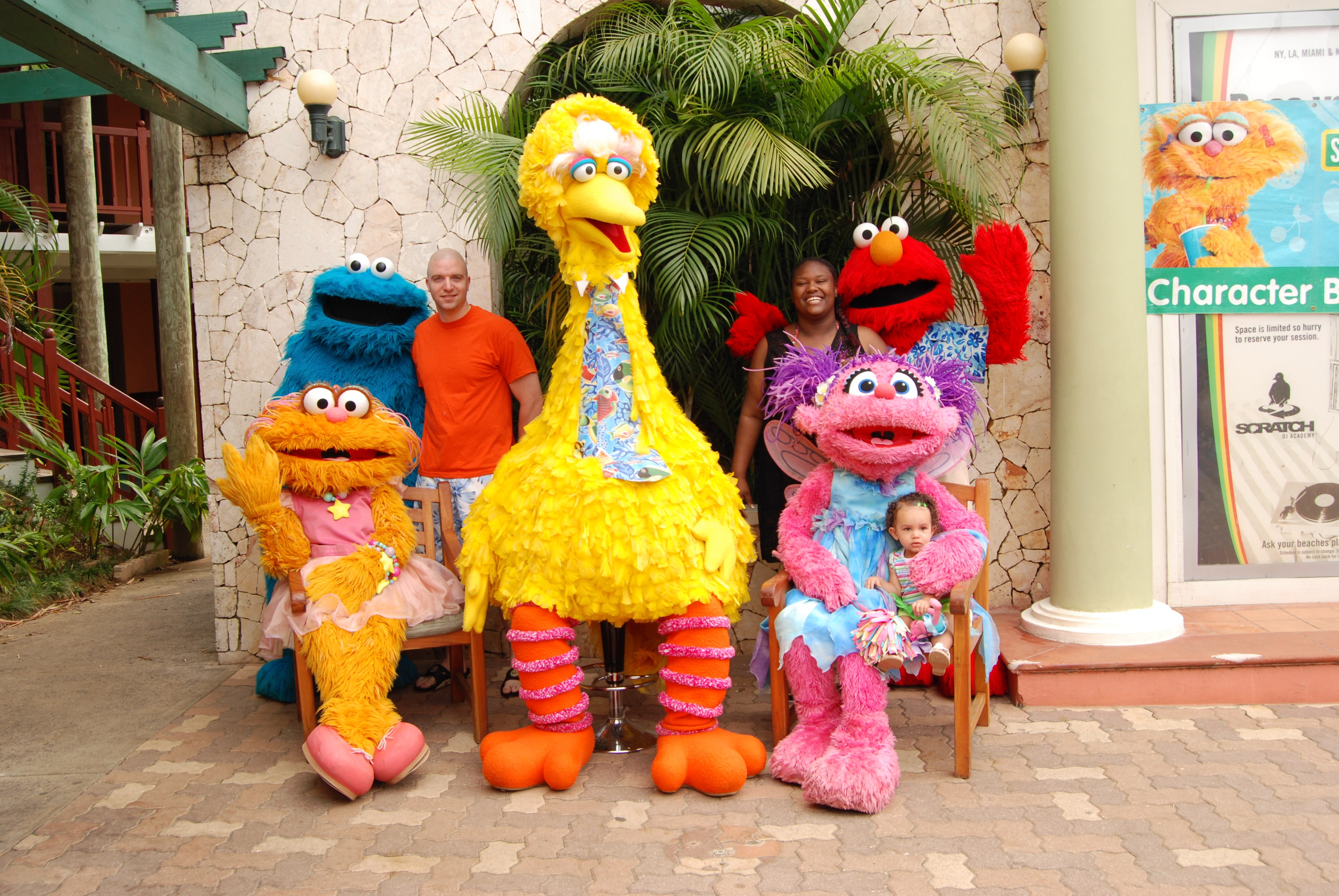 Sesame Street, Characters, Colorful, Costumes, Figures, HQ Photo
