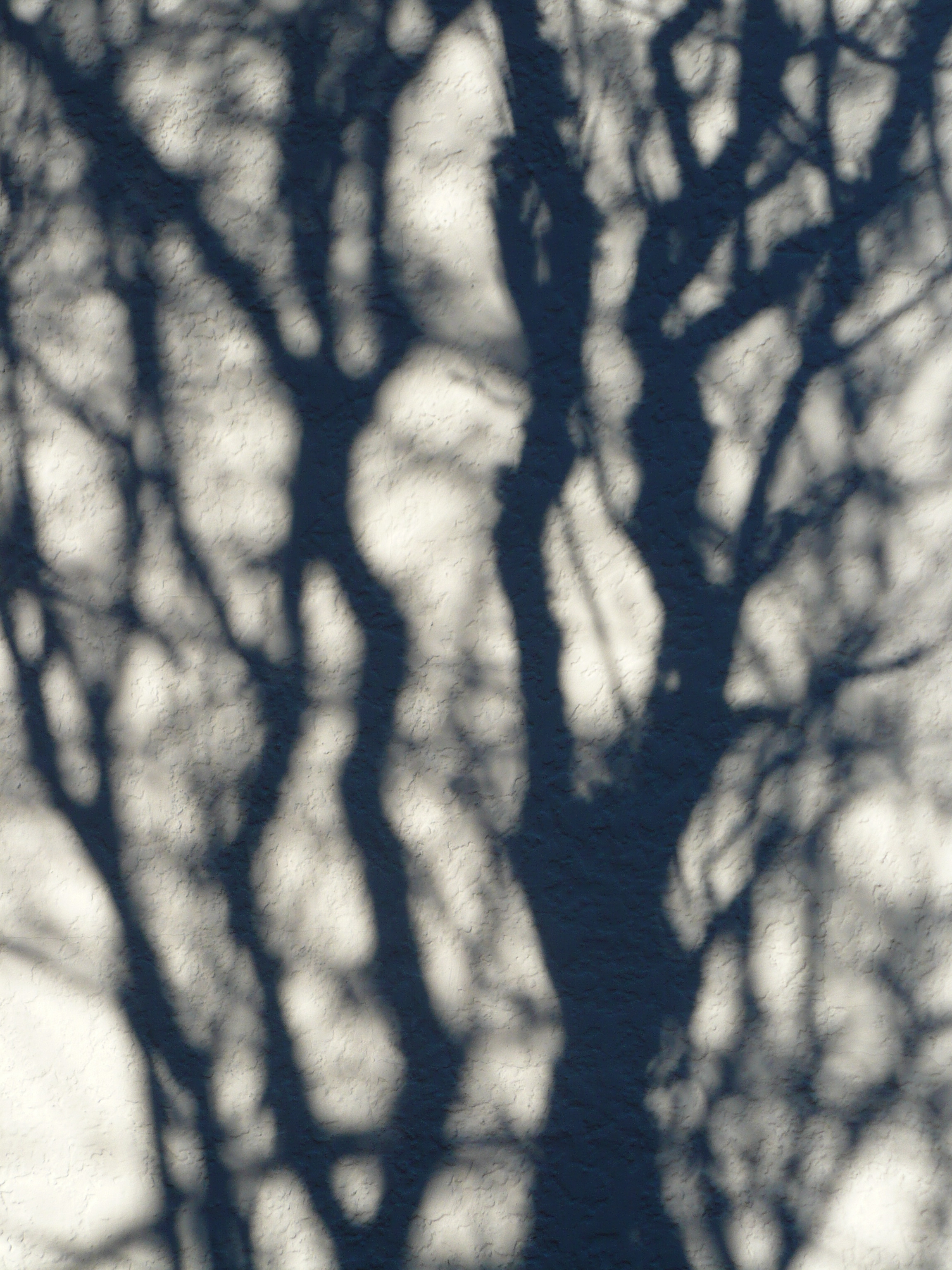 Shadow patterns photo