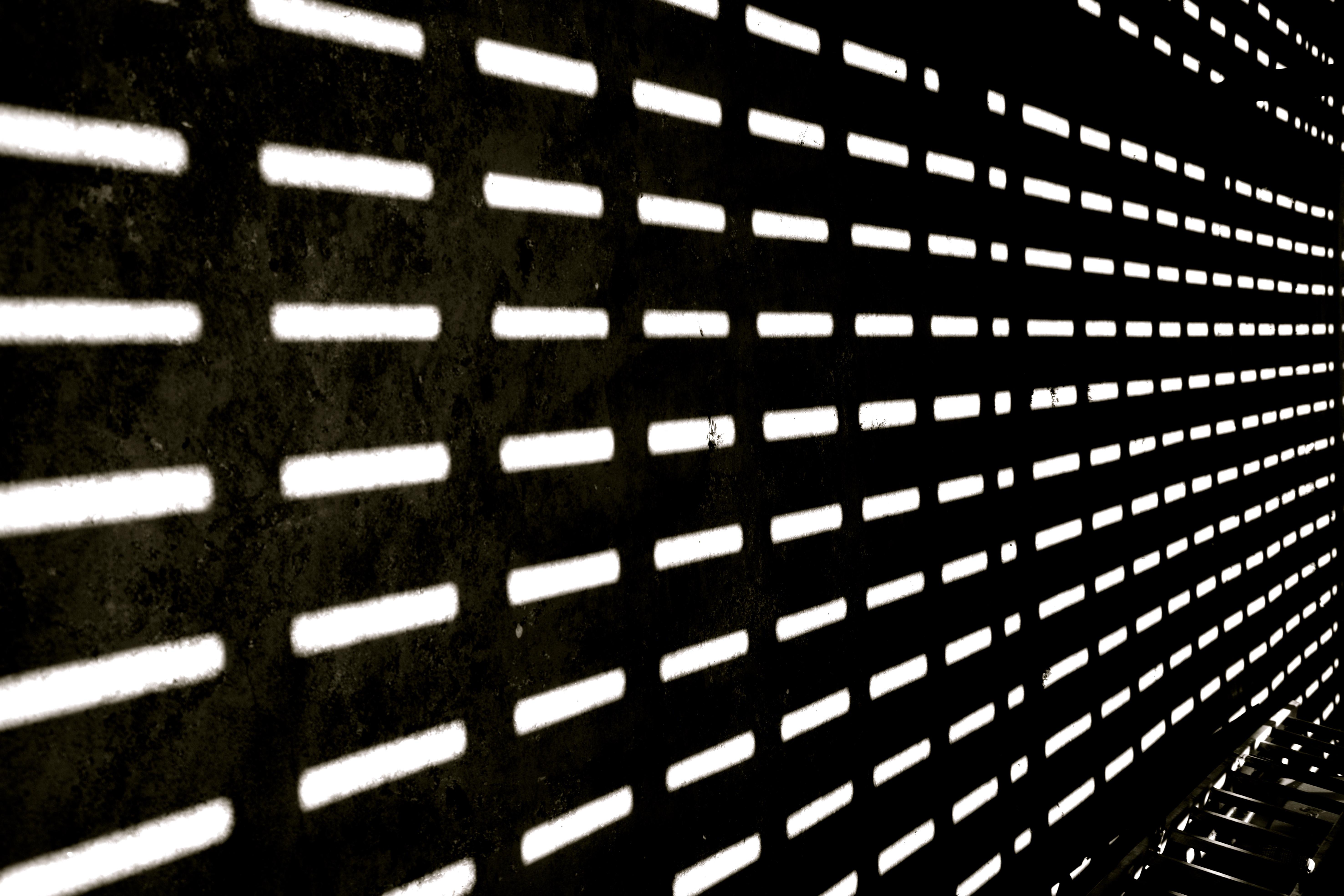 shadows   Ginan Rauf