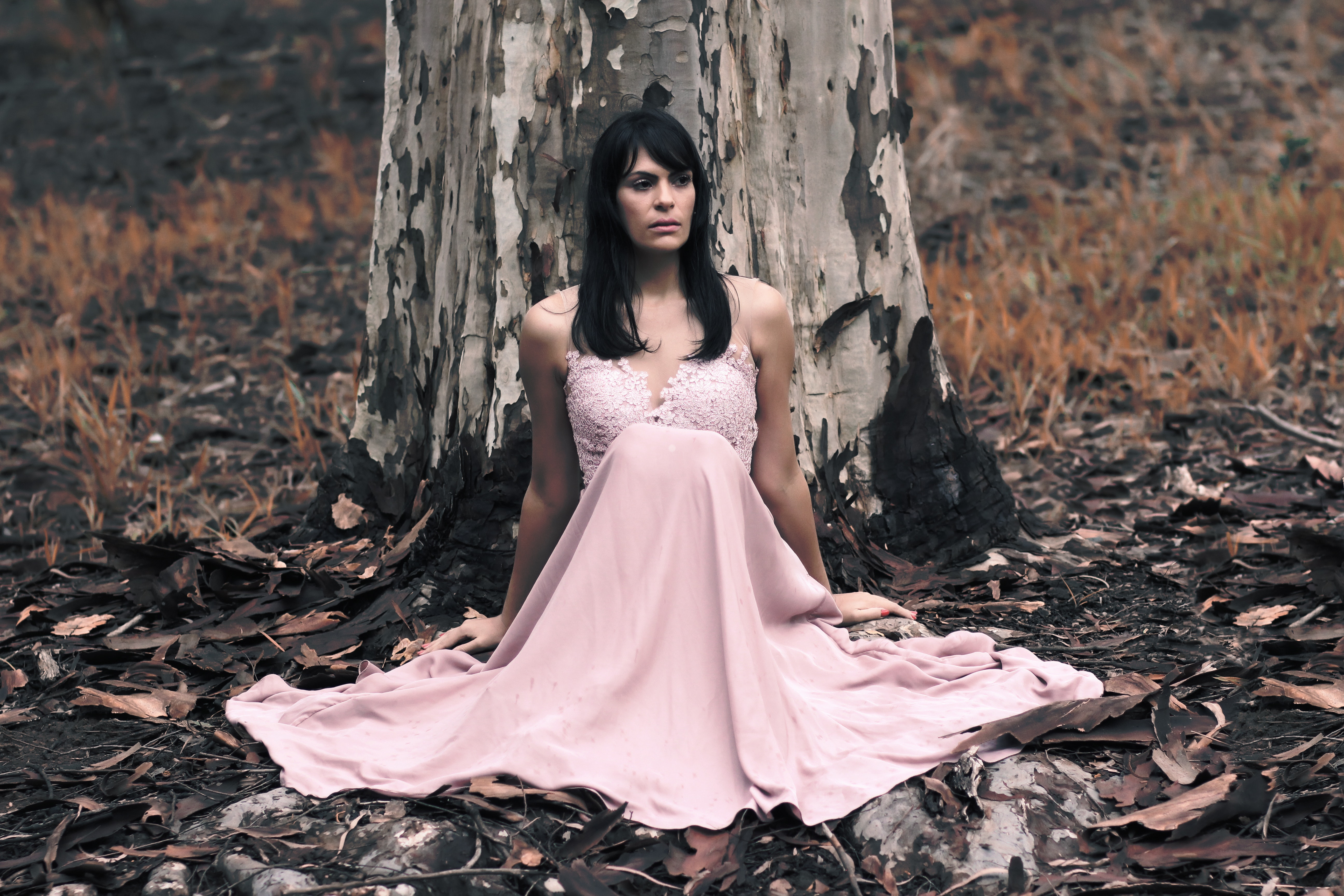 Shallow Focus Photography of Black Haired Woman in Pink Sleeveless Dress Sitting in Front of Tree, Adult, Outdoors, Woman, Wedding, HQ Photo
