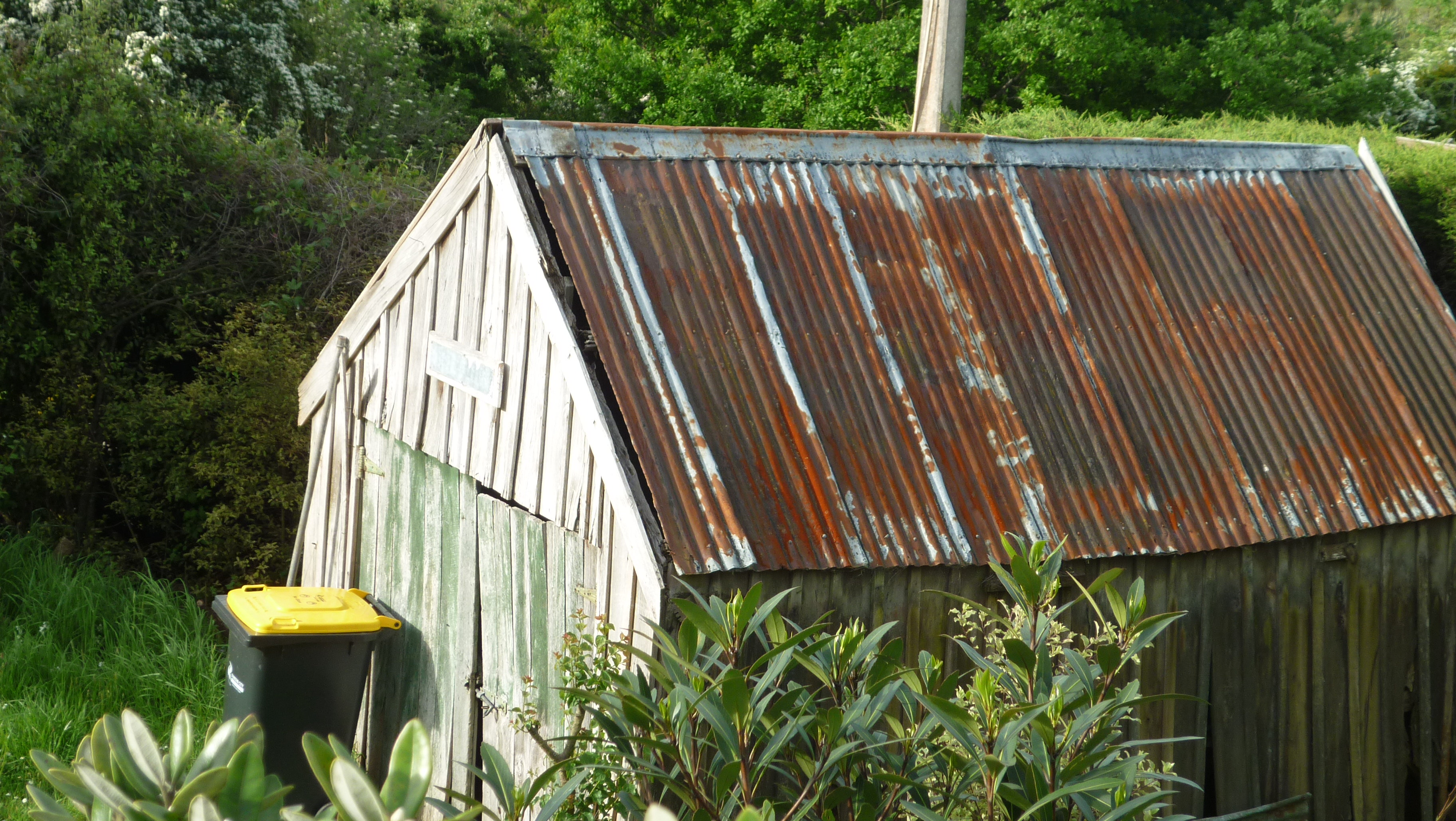 Shed at doctors point photo