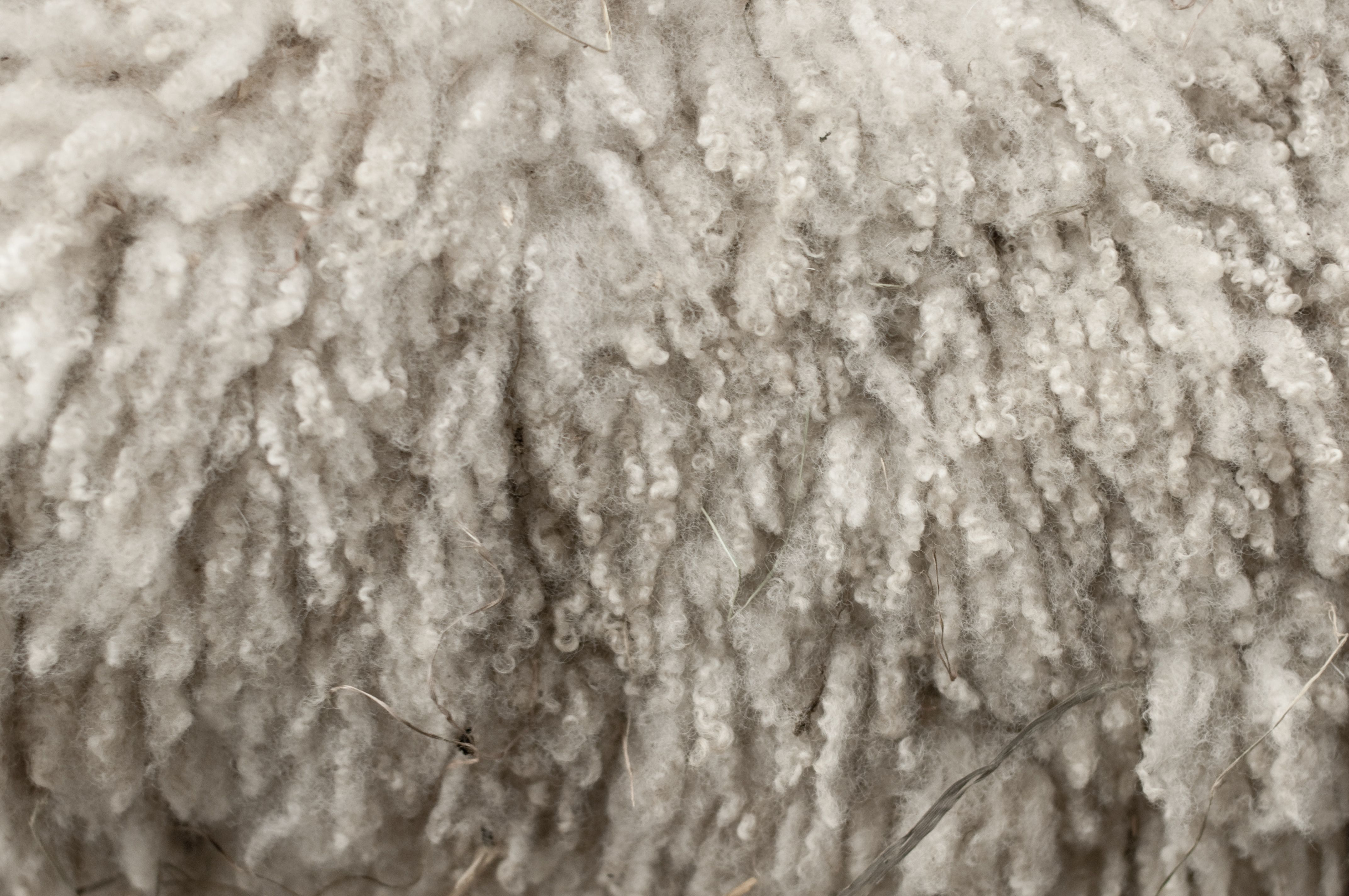 Facts about wool for wool week | Technical textiles, Fabrics and ...