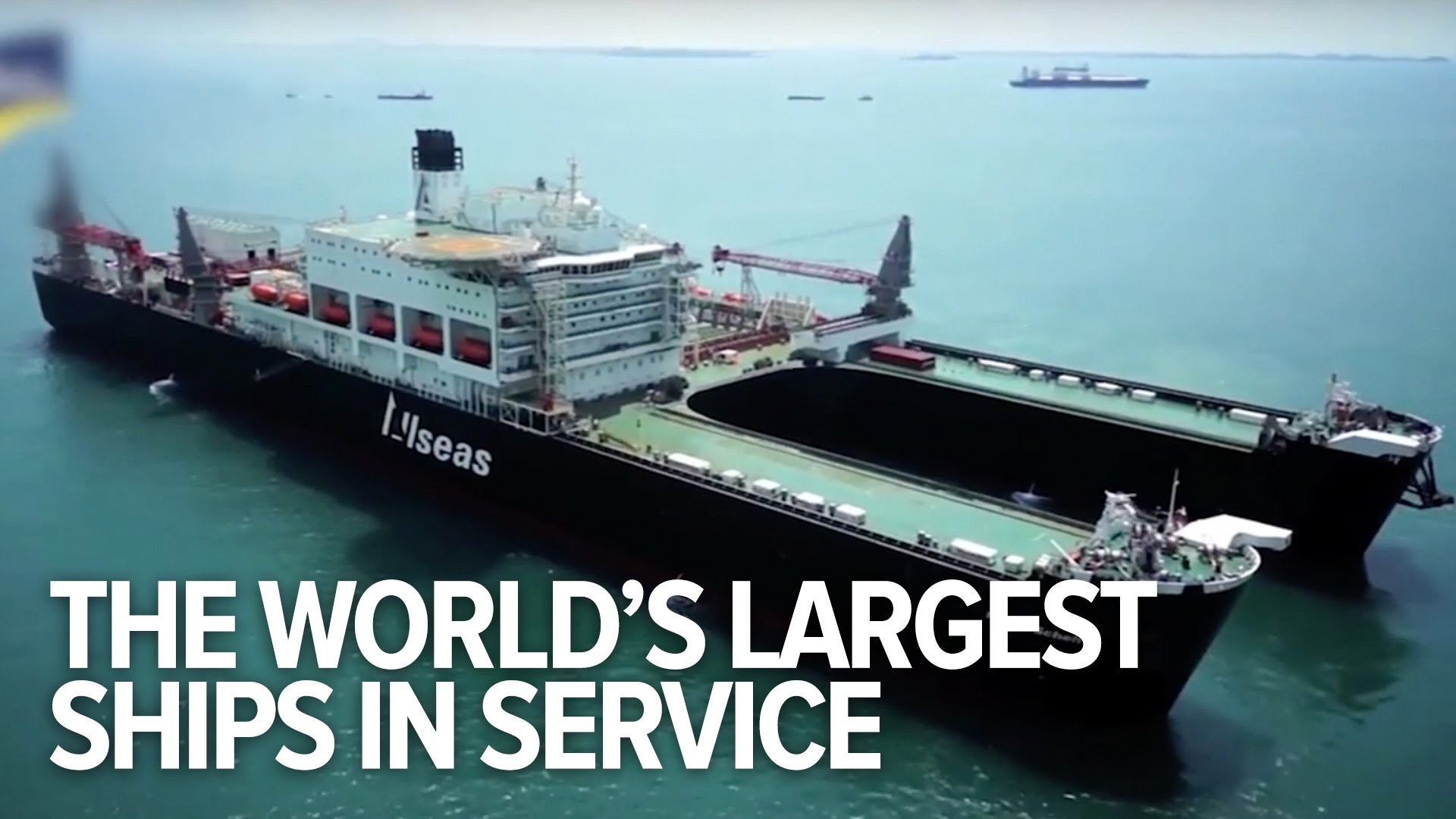 All The World's Largest Ships In Service - YouTube