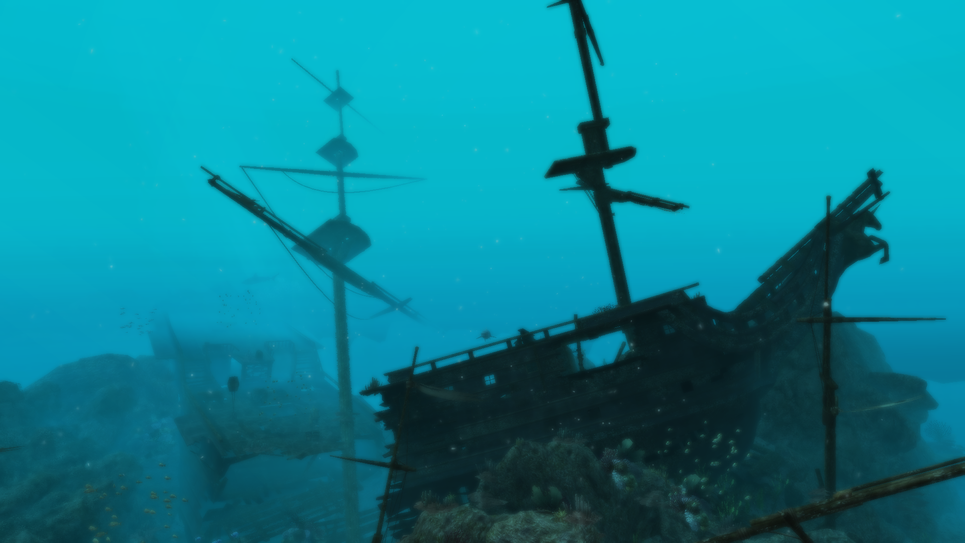 Shipwreck photo