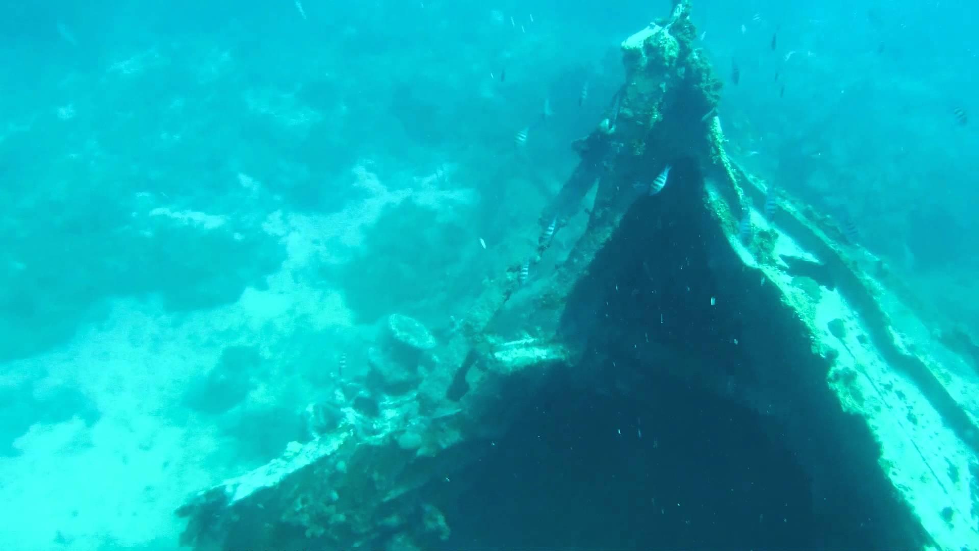 Snorkeling at Shipwreck Cove, Buck Island, St. Thomas, US Virgin ...