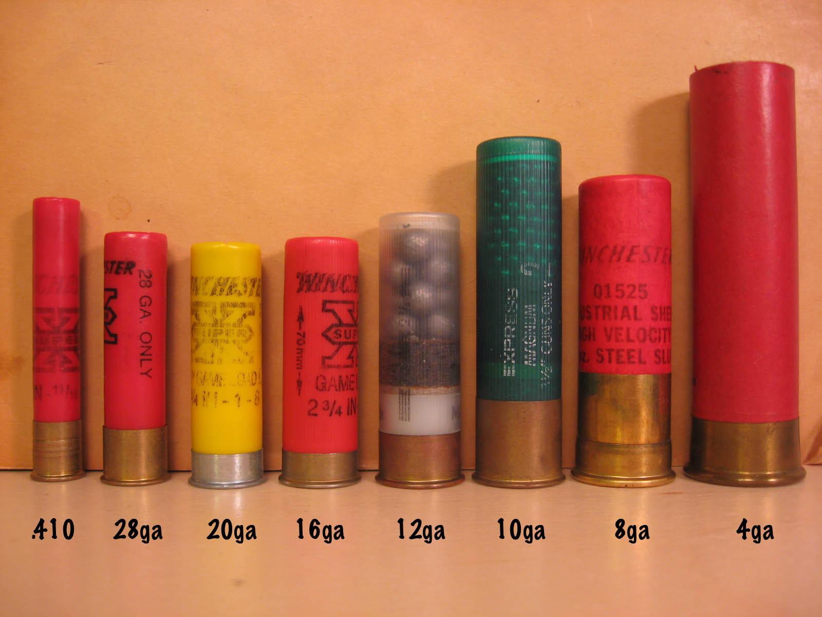 Shotgun Shell Visual Comparison