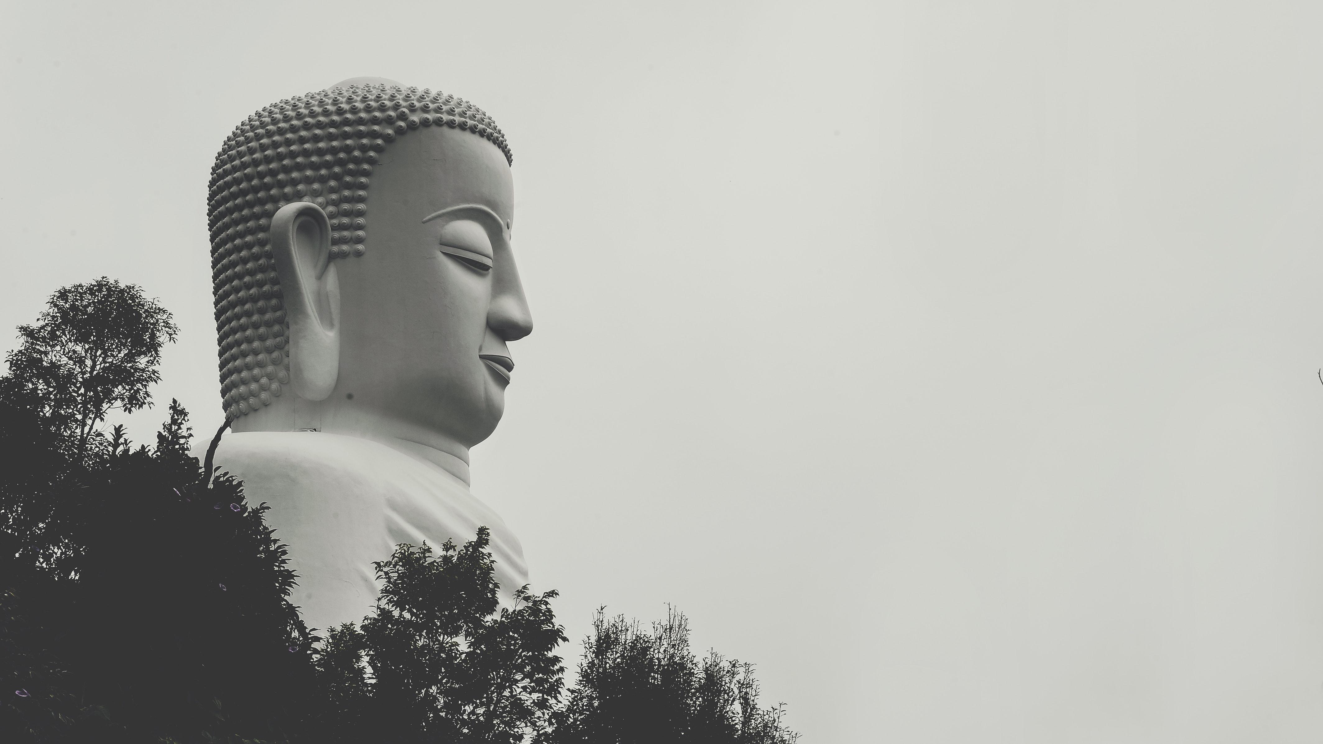 Side view photo of gautama buddha statue