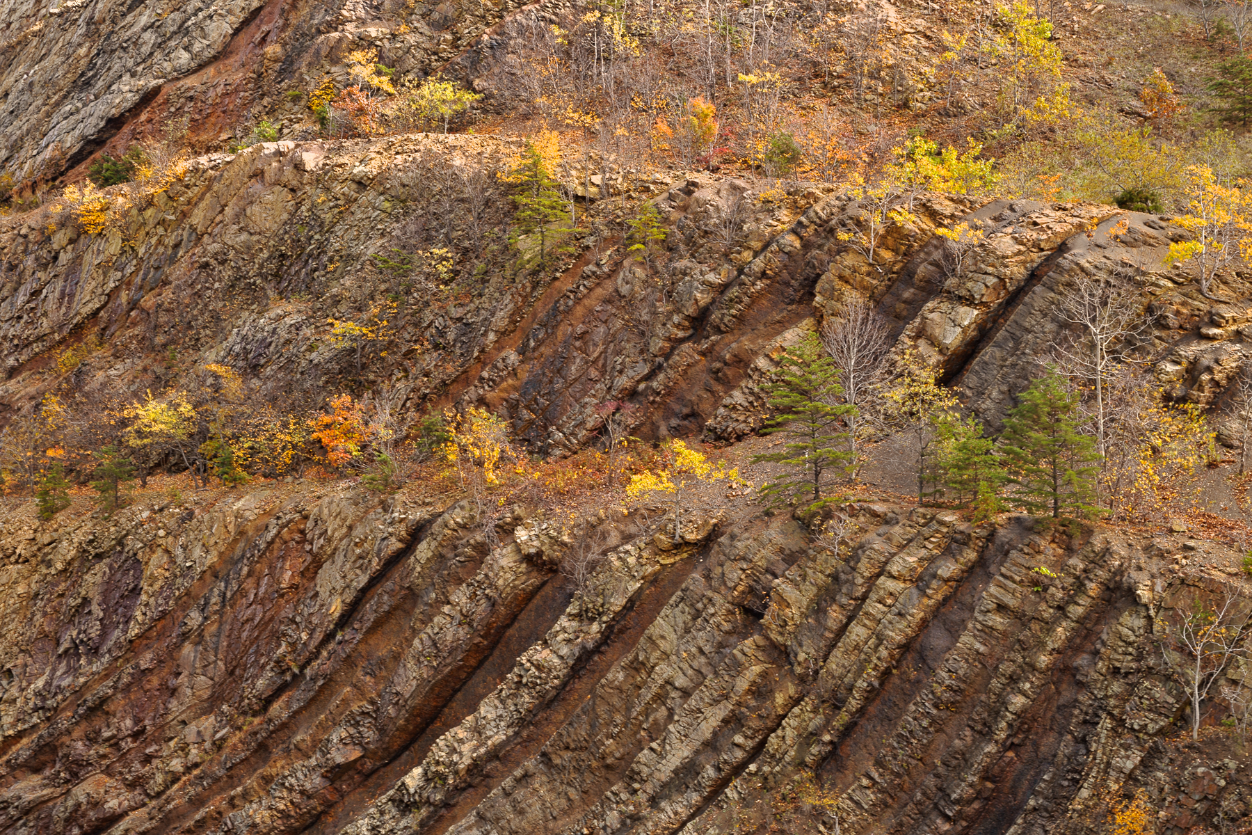 Sideling hill close-up - hdr texture photo