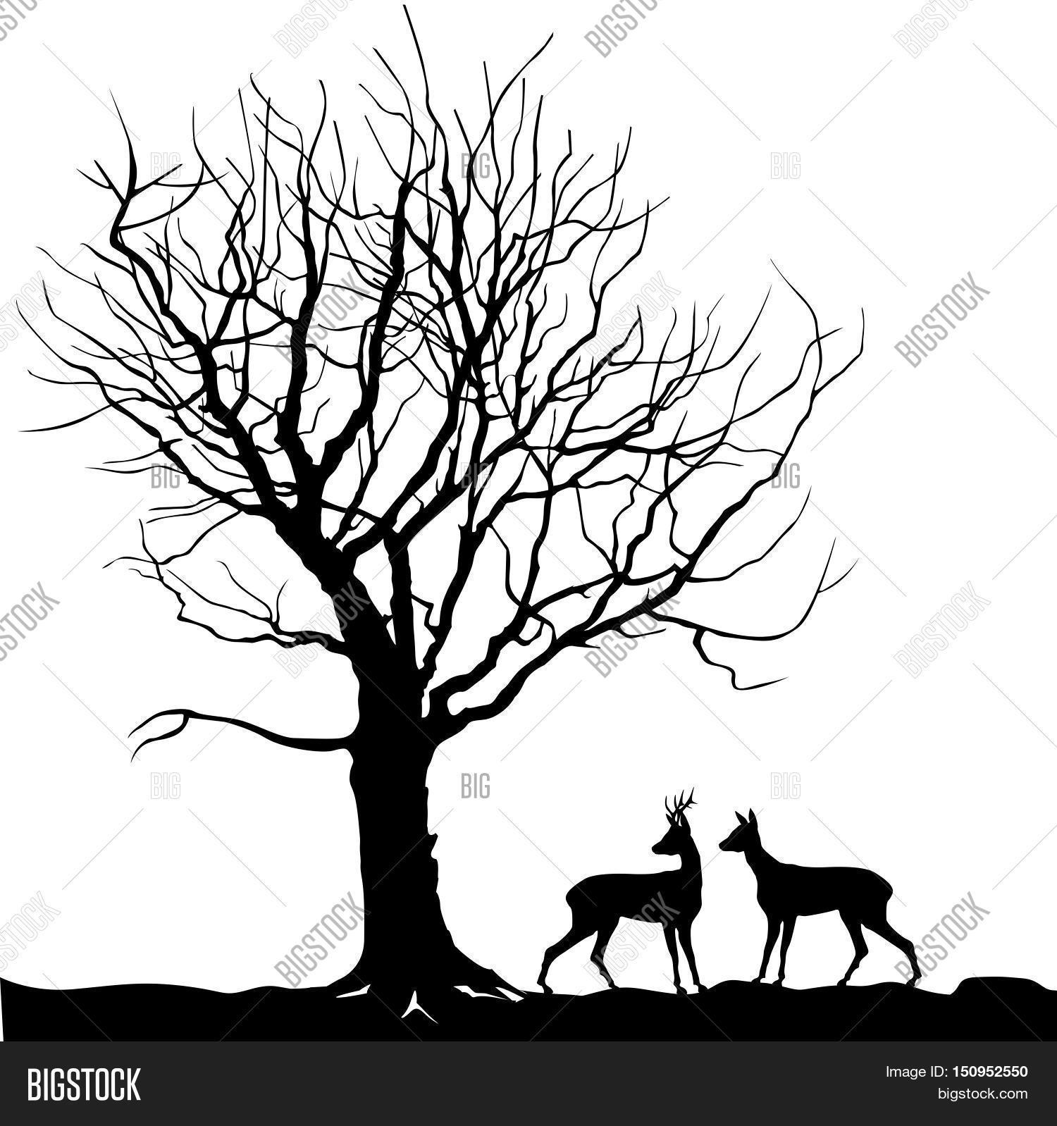 Animal Over Tree Forest Landscape Vector & Photo | Bigstock