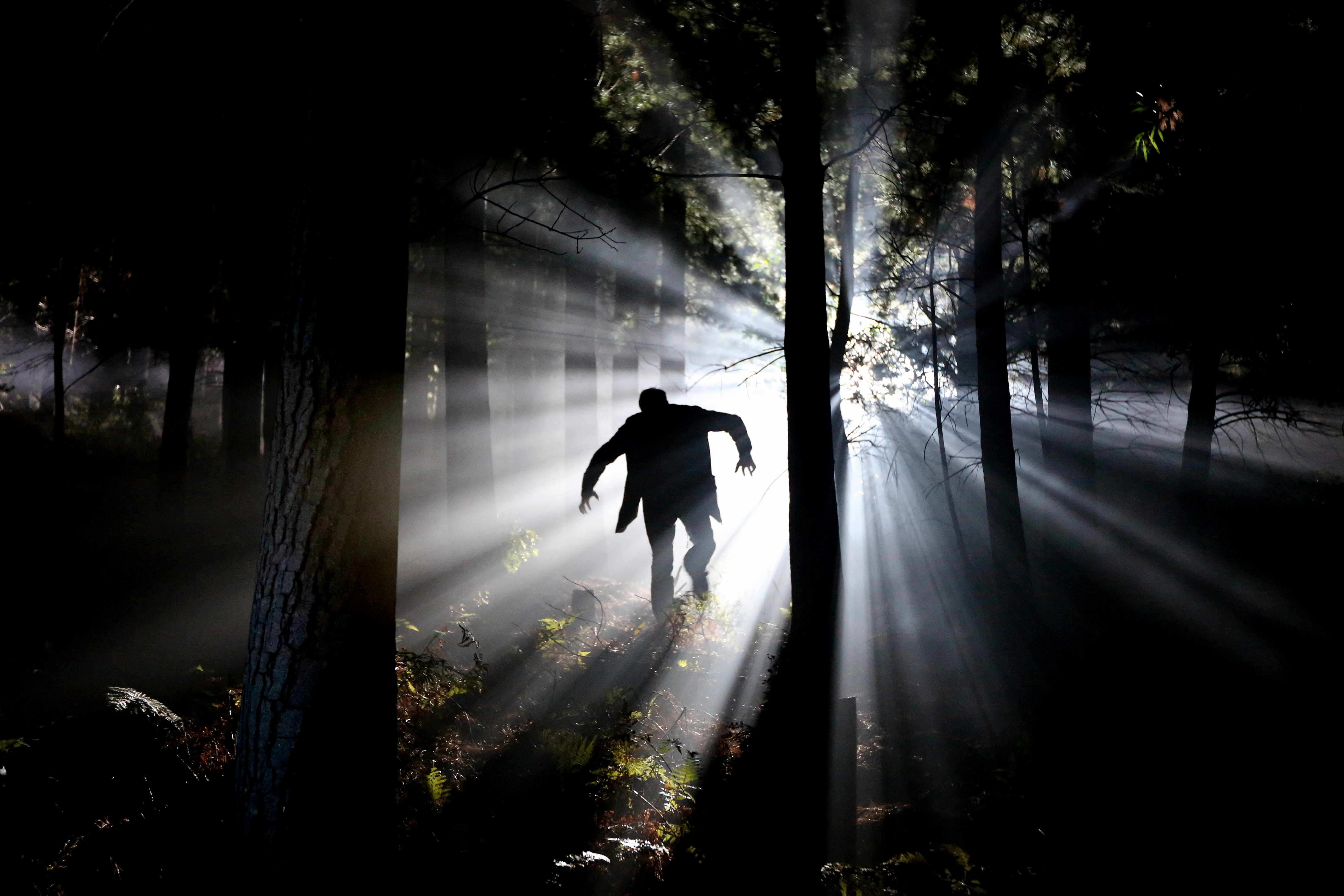 Silhouette of man running on forest photo