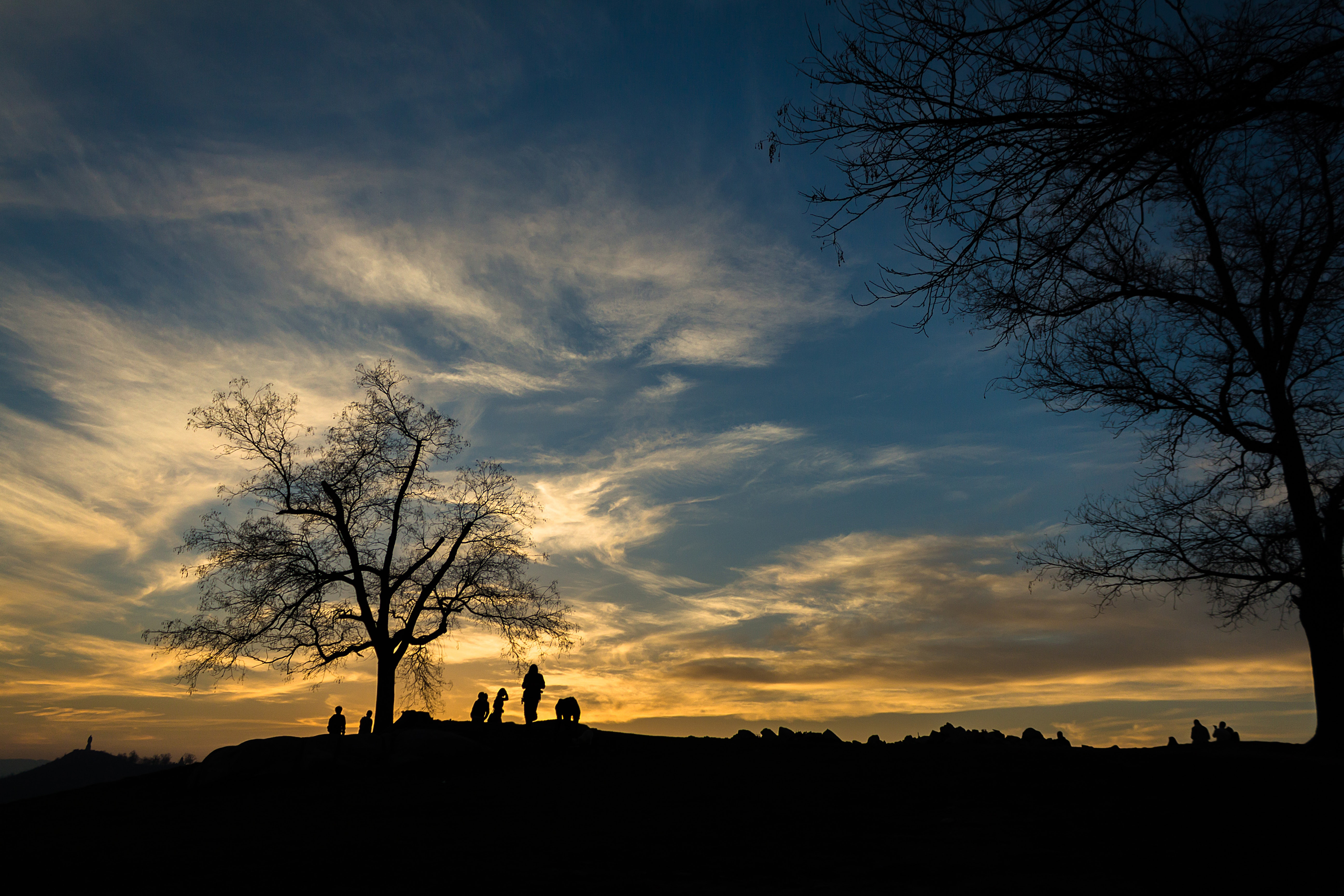Silhouette of person near bare tree at sunset photo