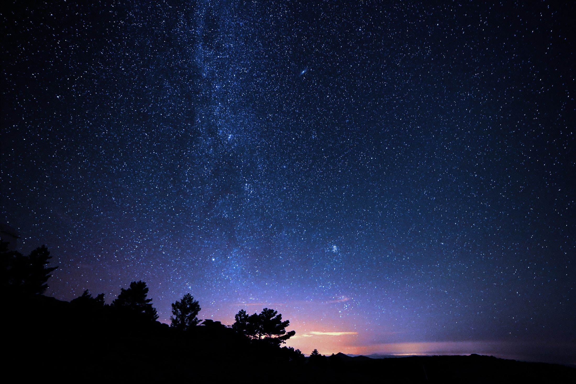 Silhouette Photo of Trees during Night Time, Outdoors, Trees, Stars, Starry sky, HQ Photo