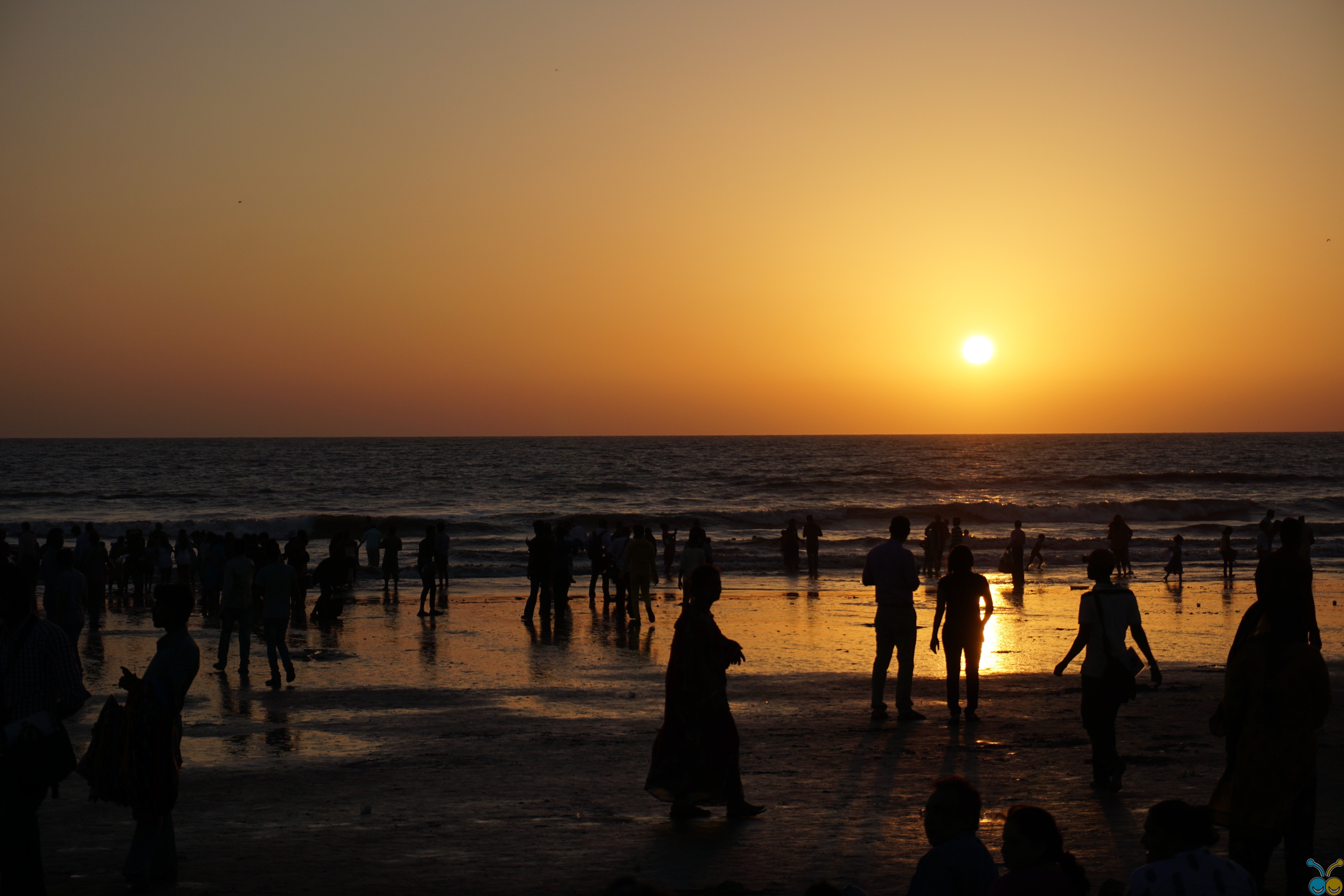 Silhouettes of people on beach at sunset photo