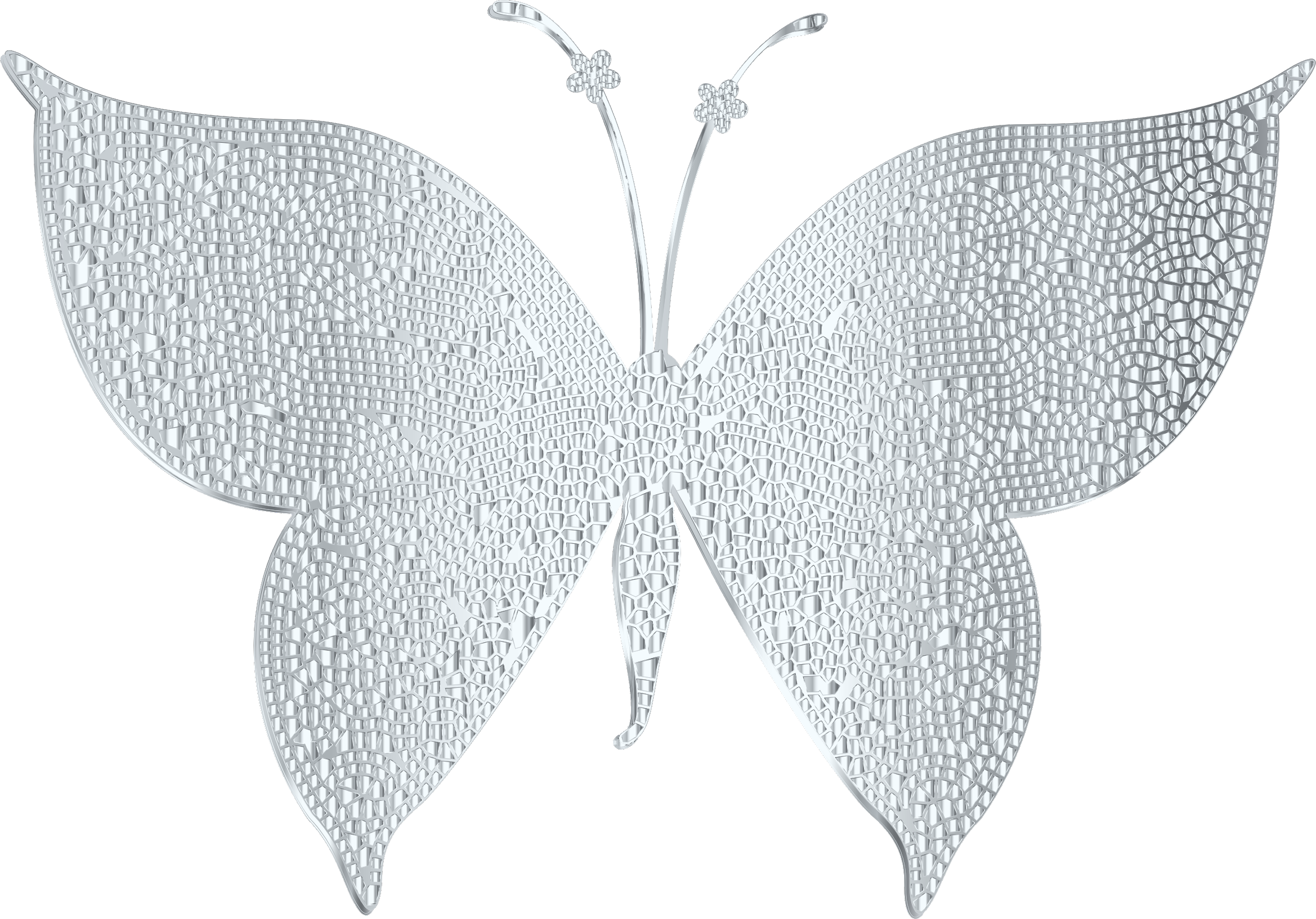 Silver butterfly photo