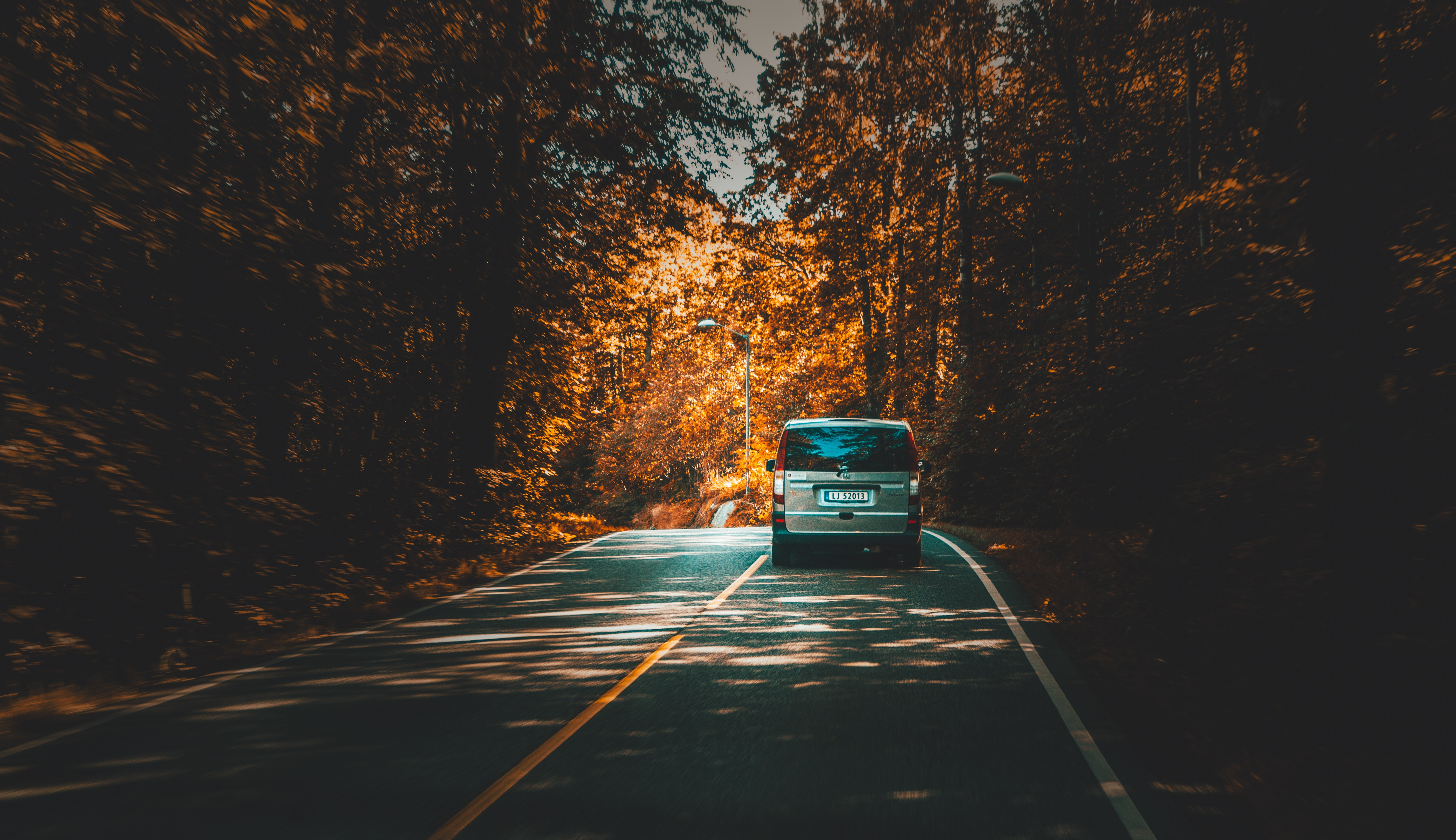 Silver van traveling on highway lined with trees during daytime photo