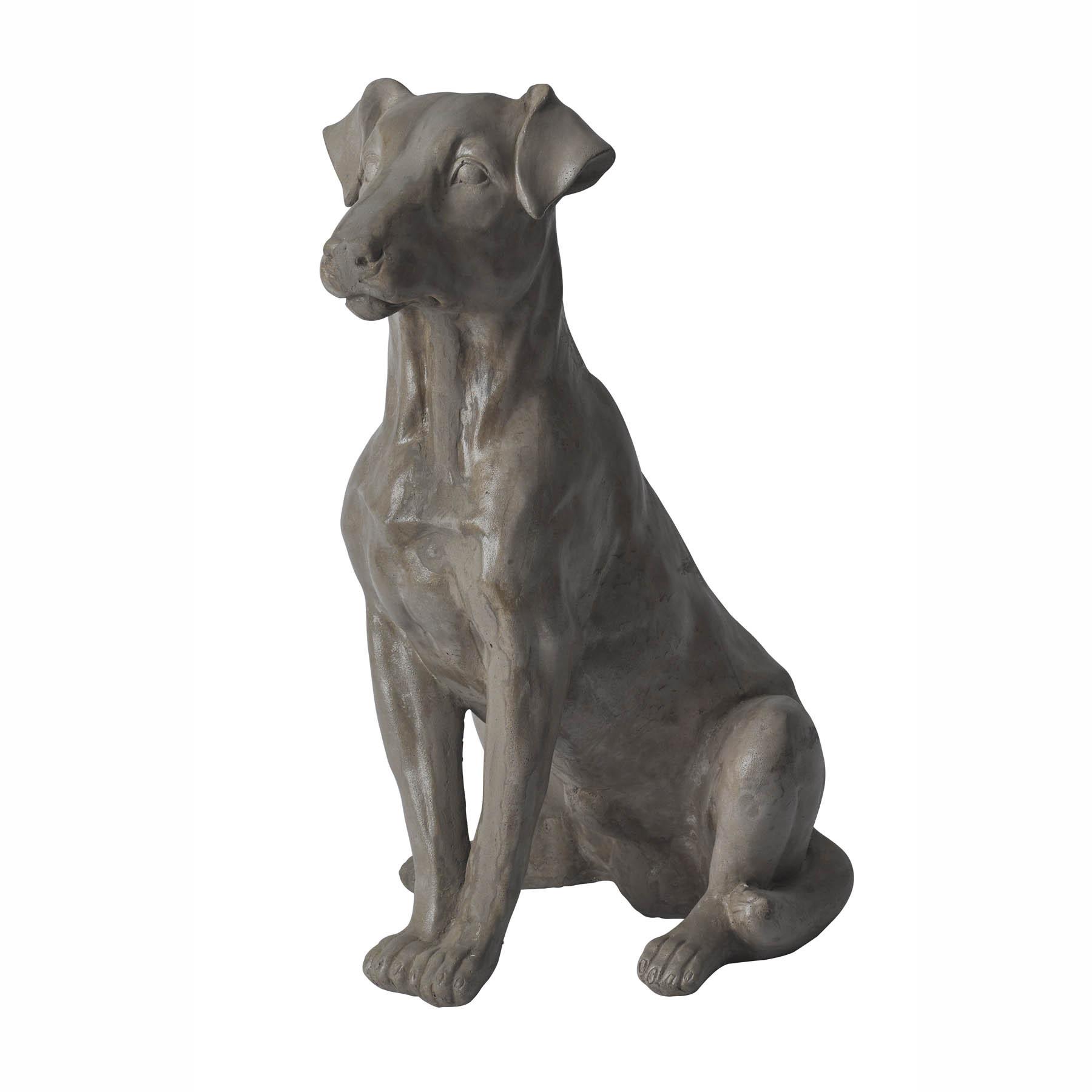 Grey Sitting Dog