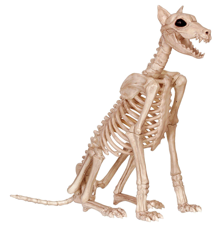 Amazon.com: Crazy Bonez Skeleton Dog - Badger Bonez: Toys & Games