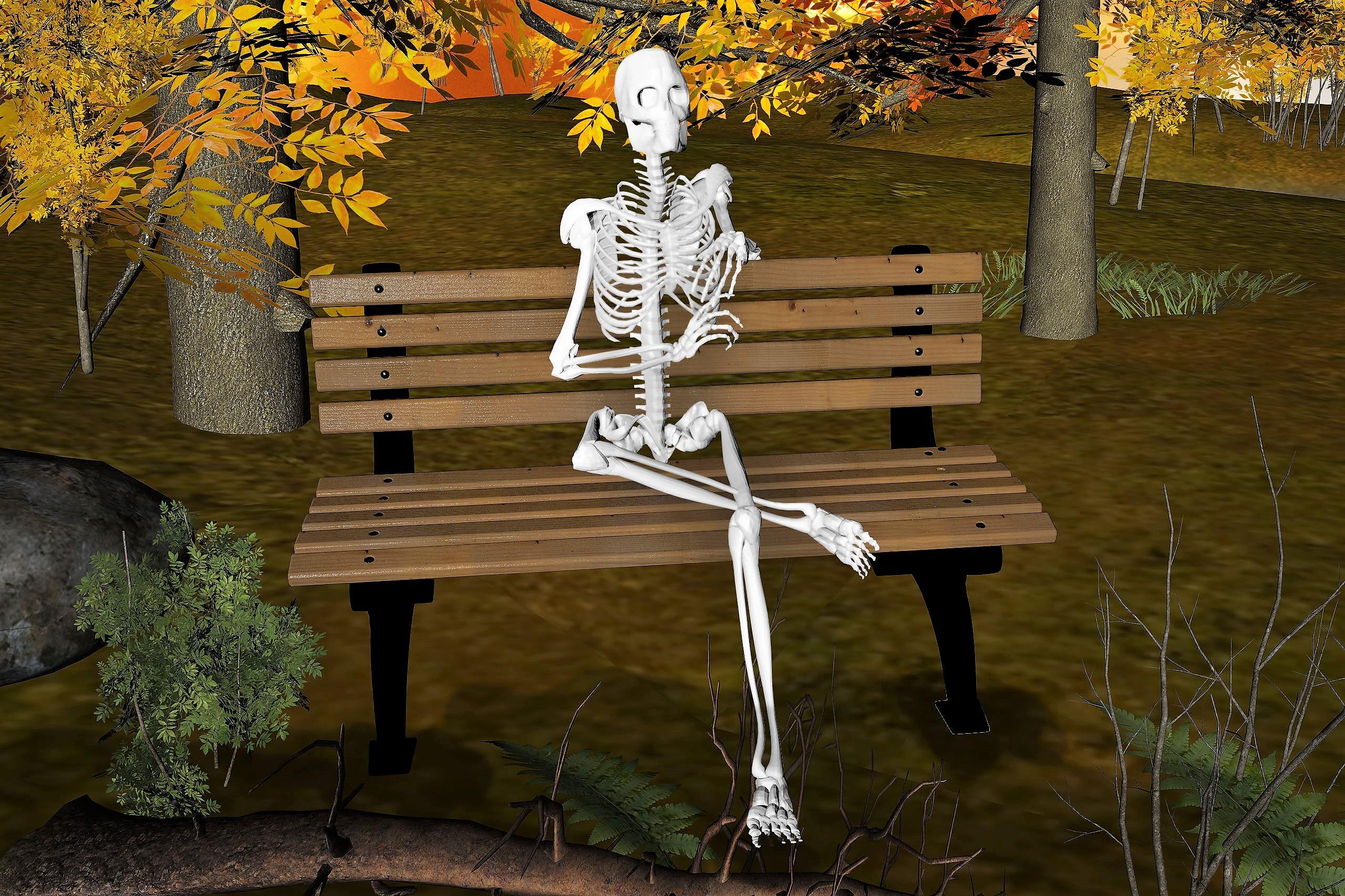 Skeleton Sitting on Bench, Mysterious, Skeleton, Surreal, 3drender, HQ Photo