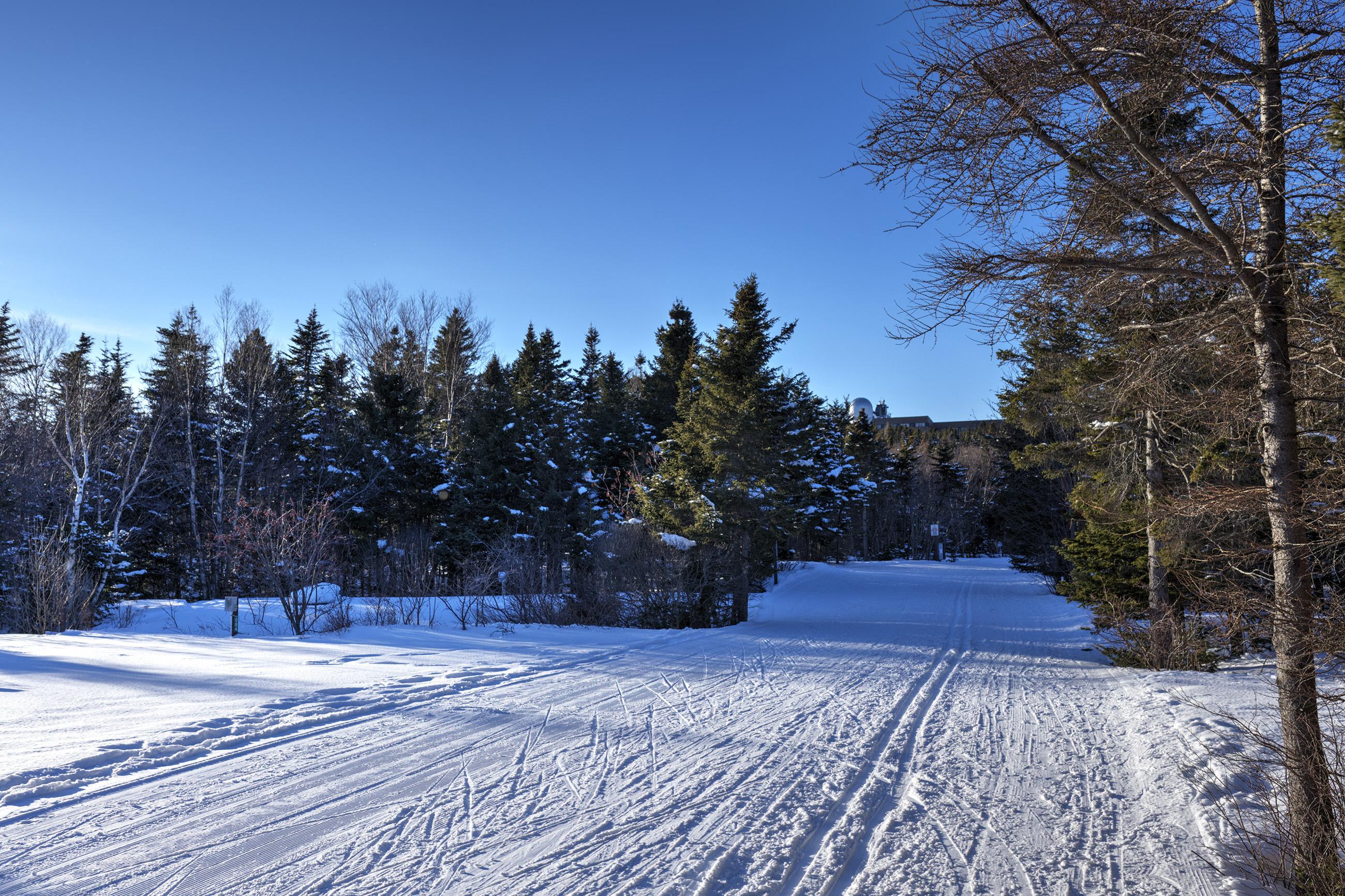 Ski course, Active, Recreation, Nordic, North, HQ Photo