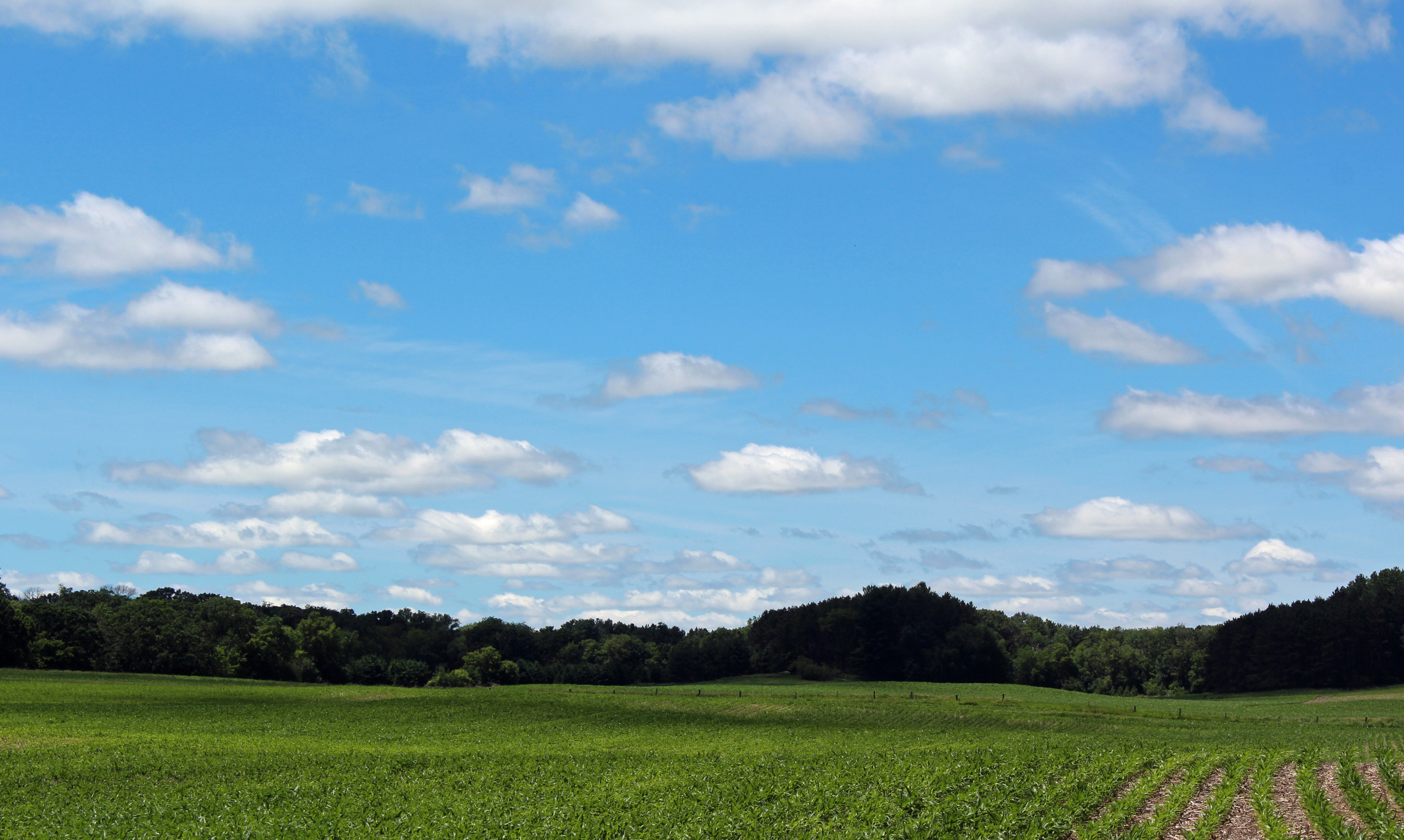 Field and sky, Marine on St. Croix | St. Croix 360