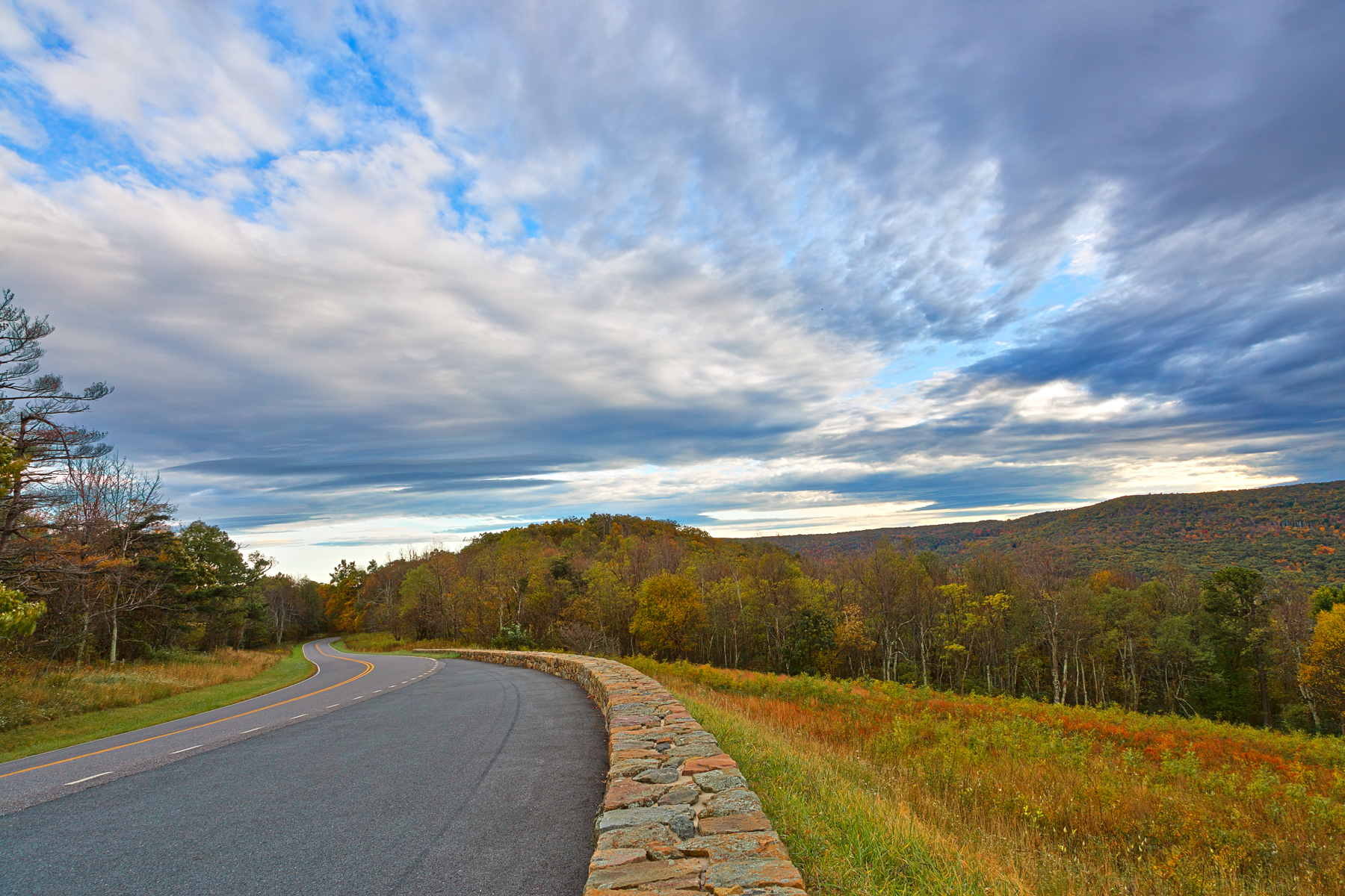 Skyline Drive - HDR, America, Plant, Scenery, Scene, HQ Photo