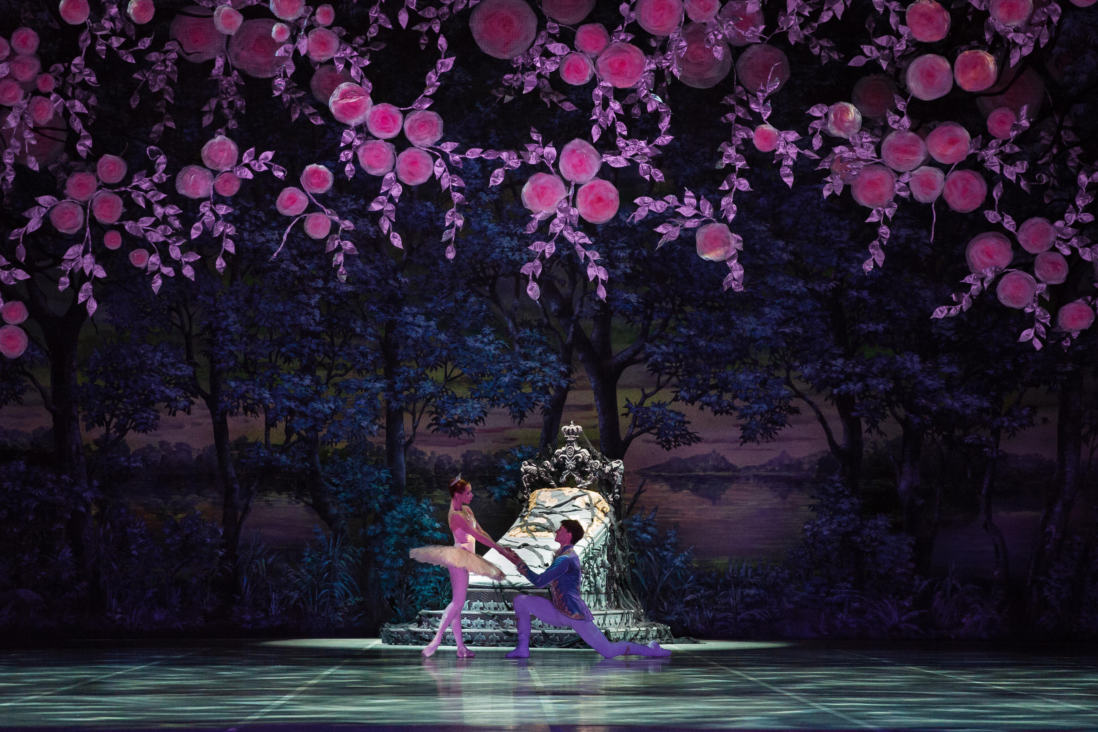 The Sleeping Beauty [DVD & Blu-ray] | BelAir Classiques