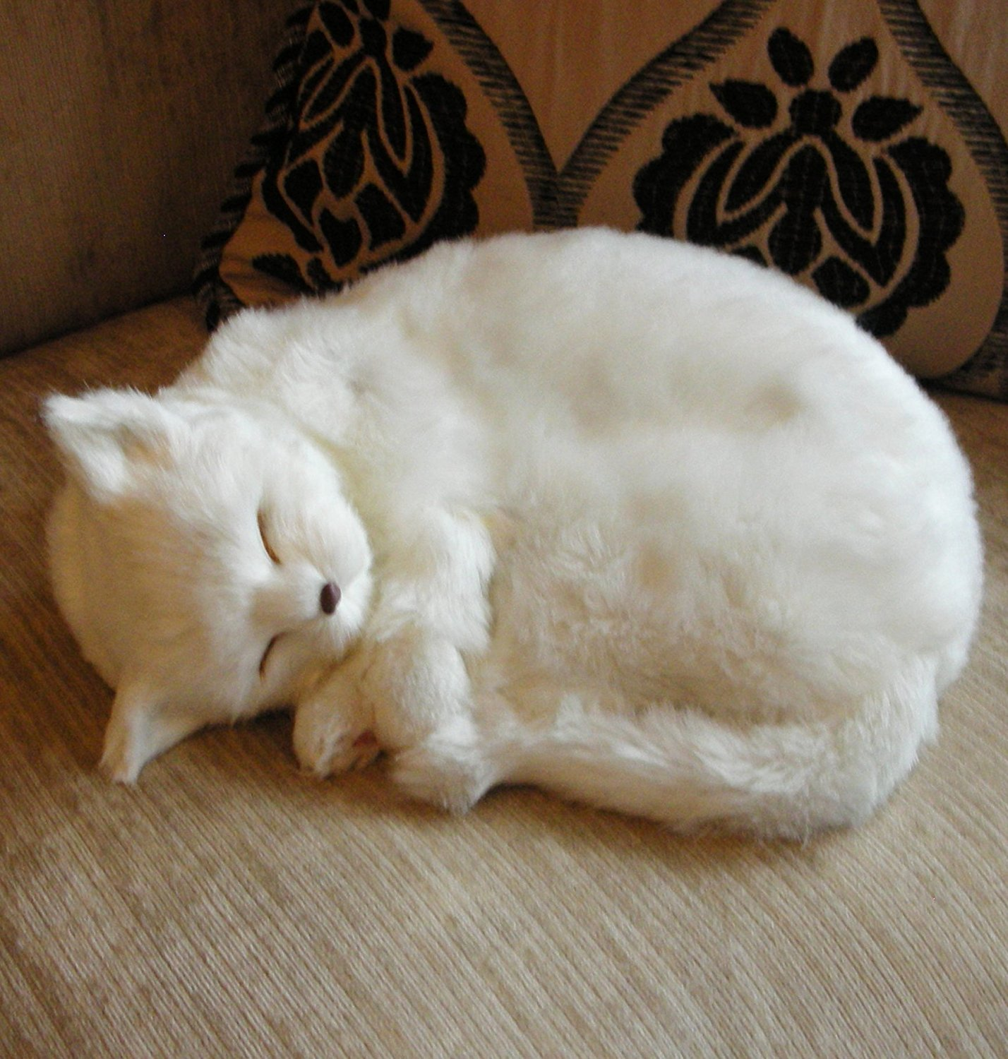 Angel | Realistic Sleeping Life Size White Cat | Faux Fur Plush ...