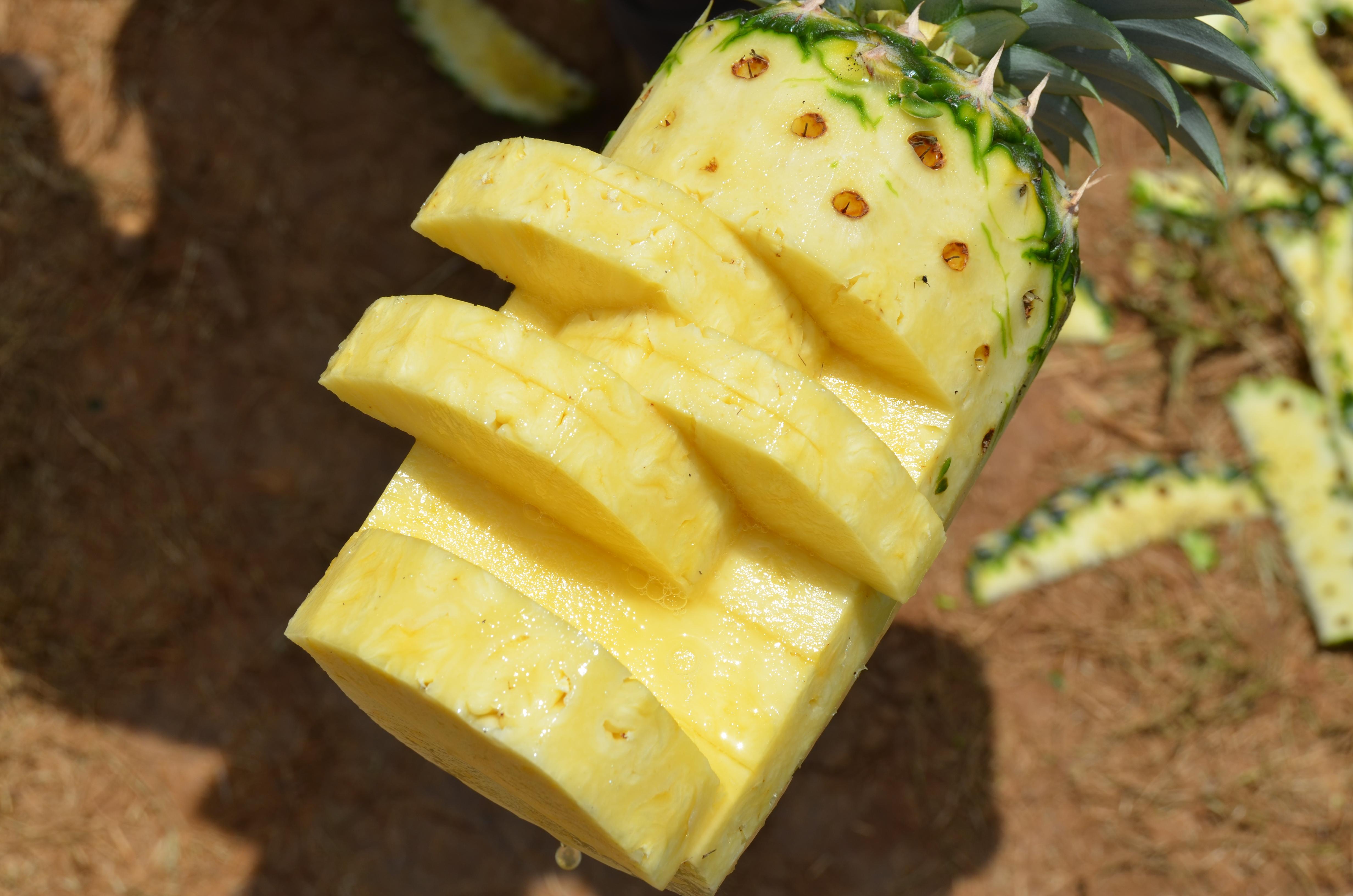 Pineapple Sorbet | Garlic & Zest