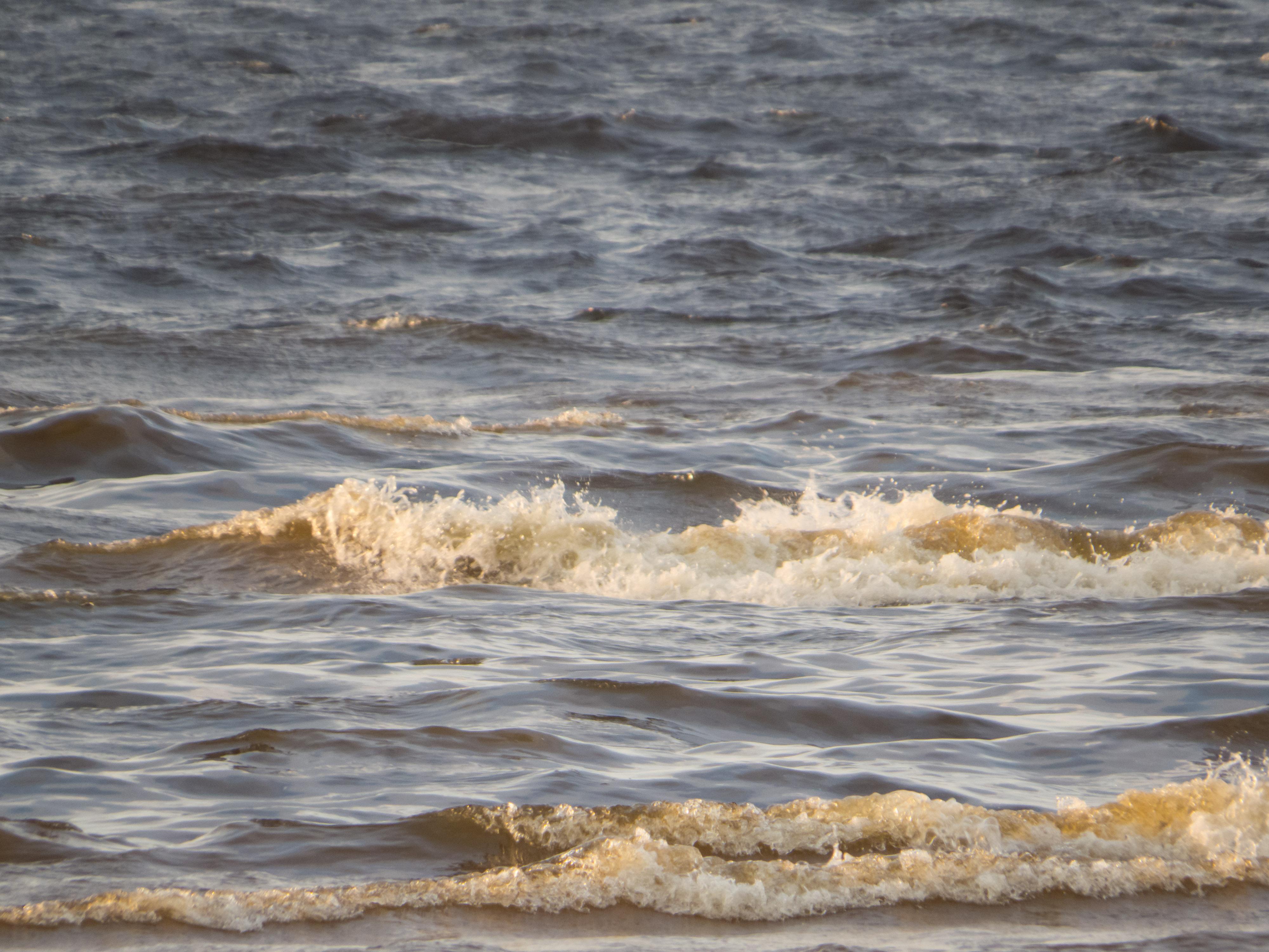 Small wave, Baltic, Beach, Beautiful, Coast, HQ Photo