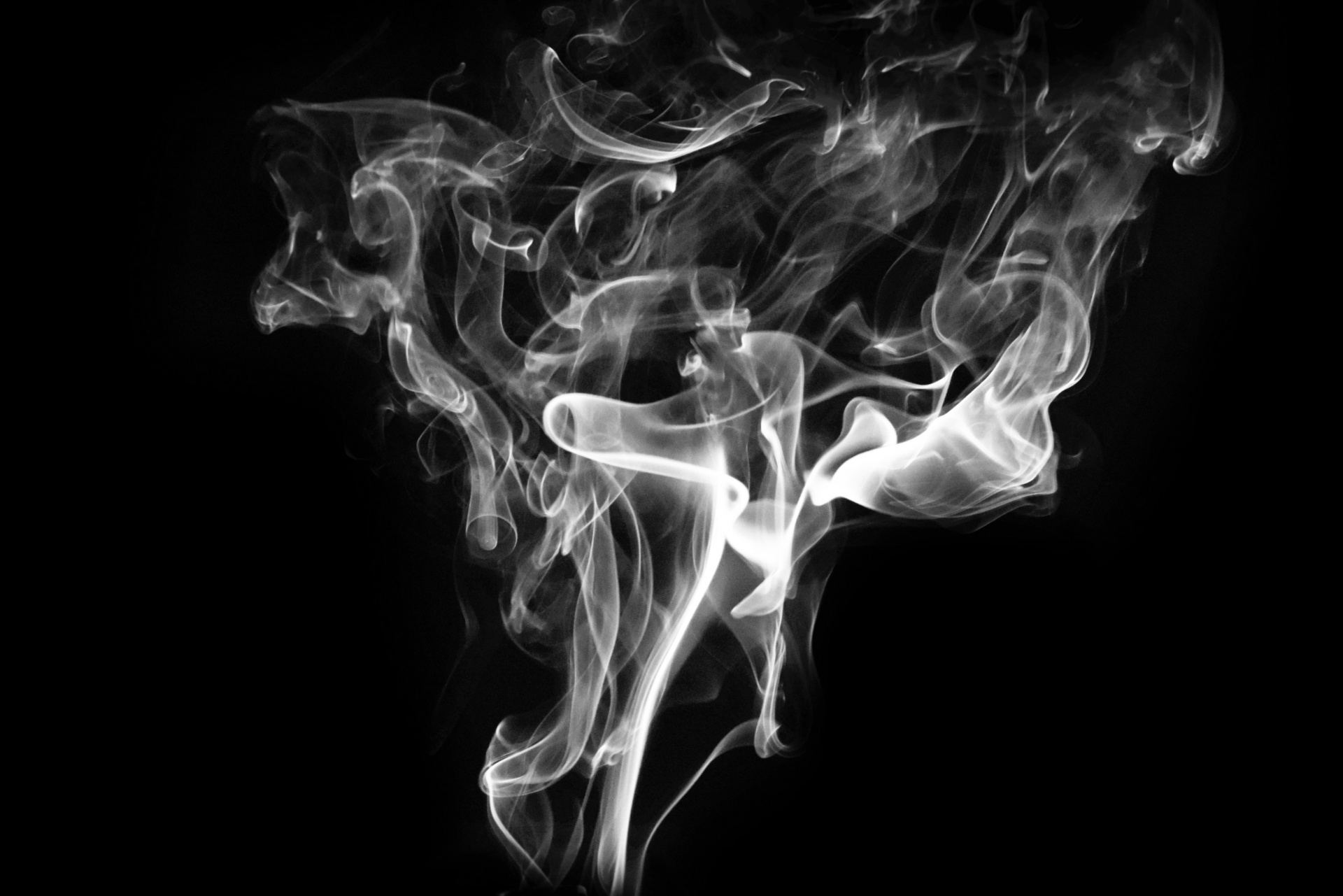 Smoke on white photo