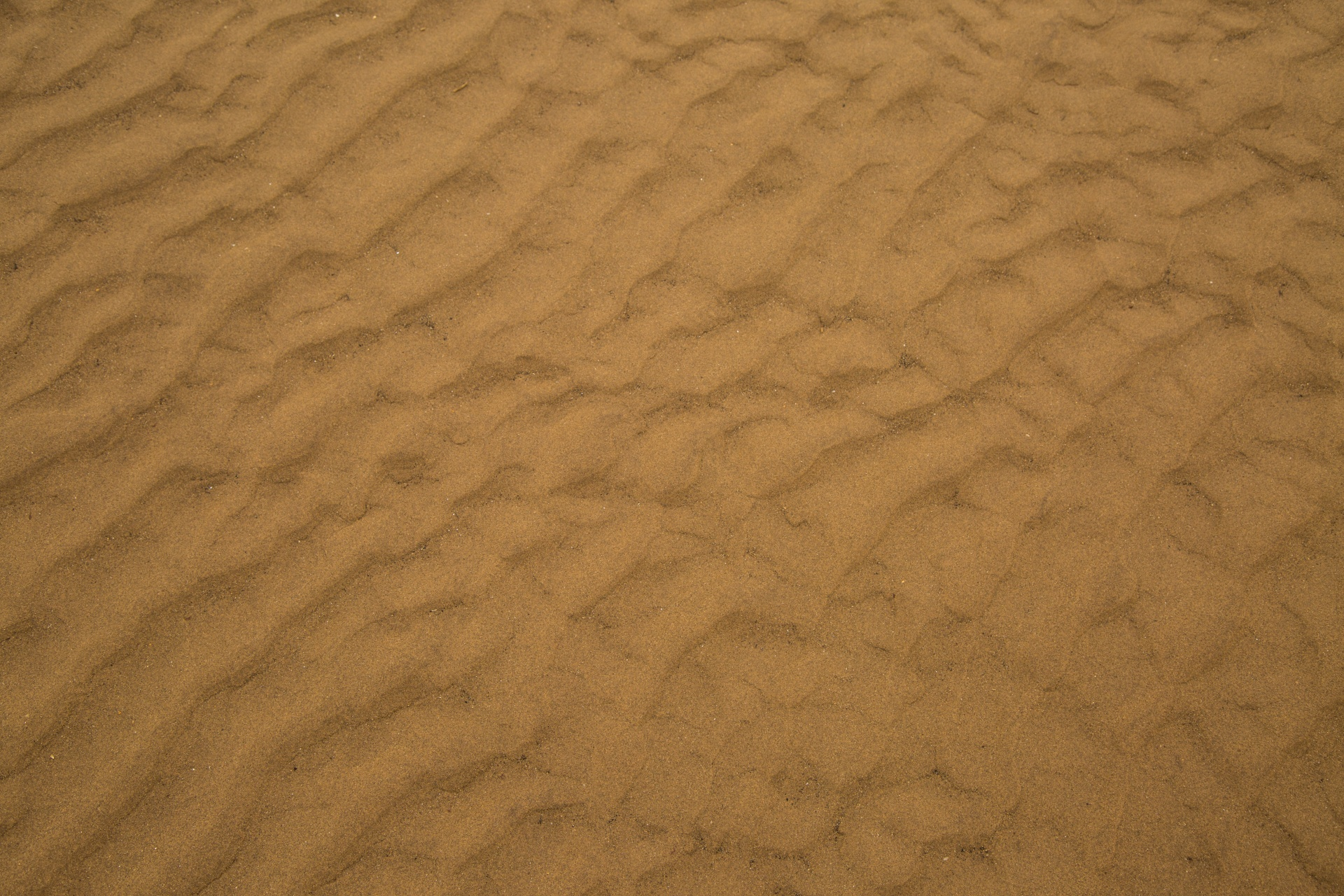 Sand Texture Free Stock Photo - Public Domain Pictures