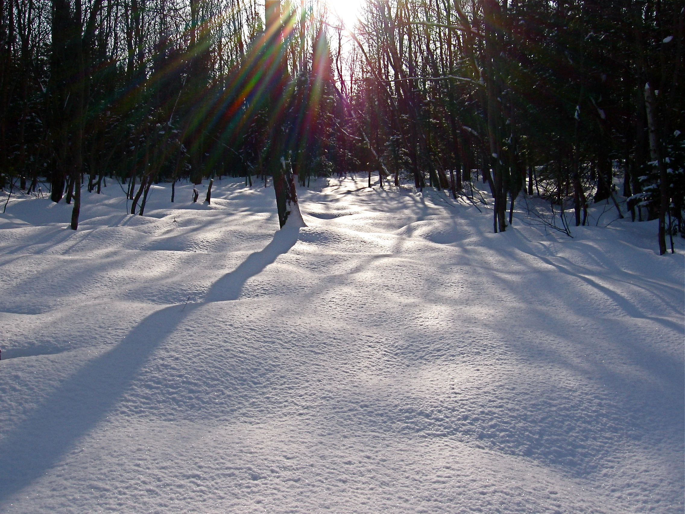 Snow on the ground, Flare, Ground, Ice, Nature, HQ Photo