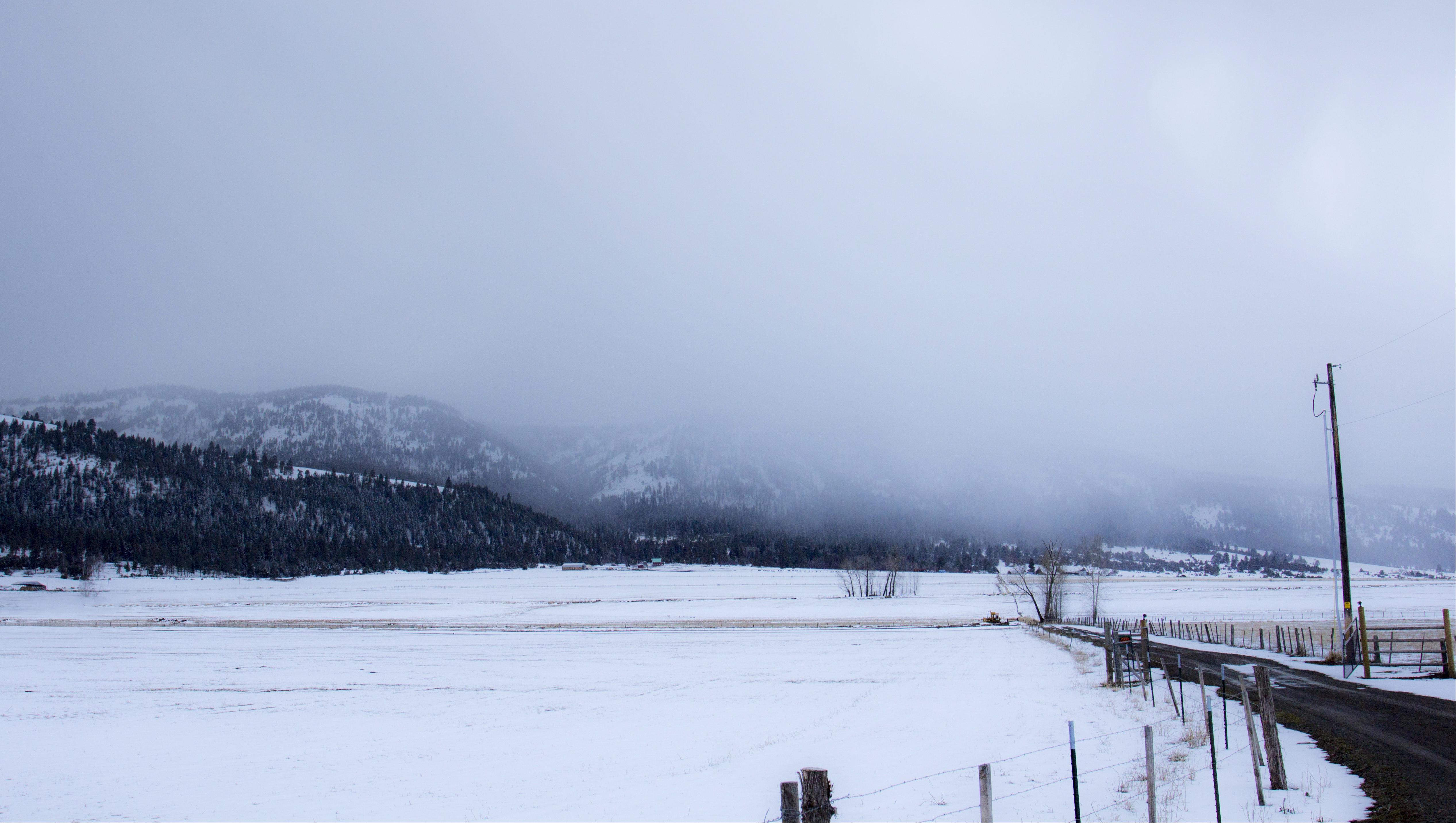 Snow storm on blue mountains, oregon photo